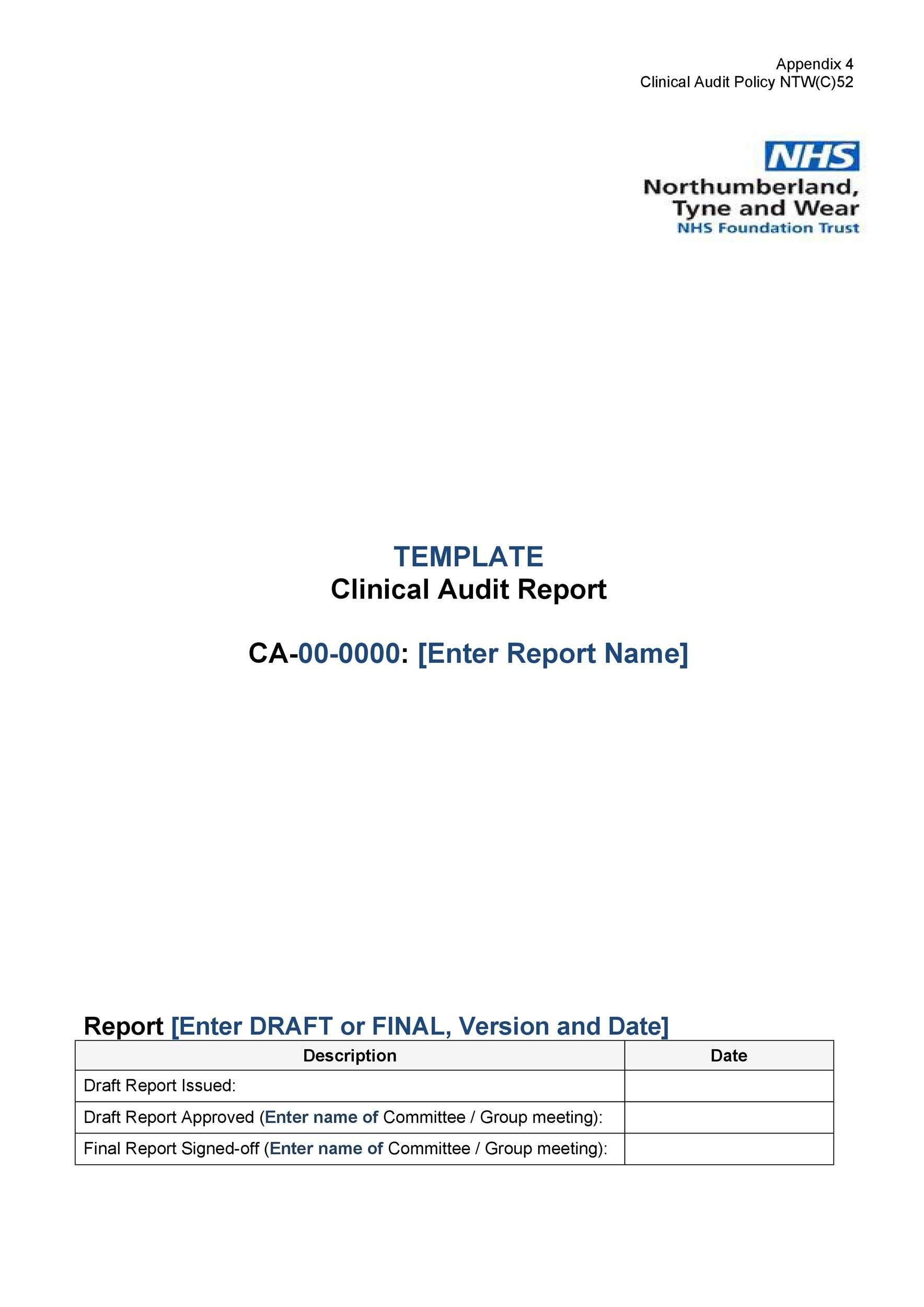 Free audit report template 31