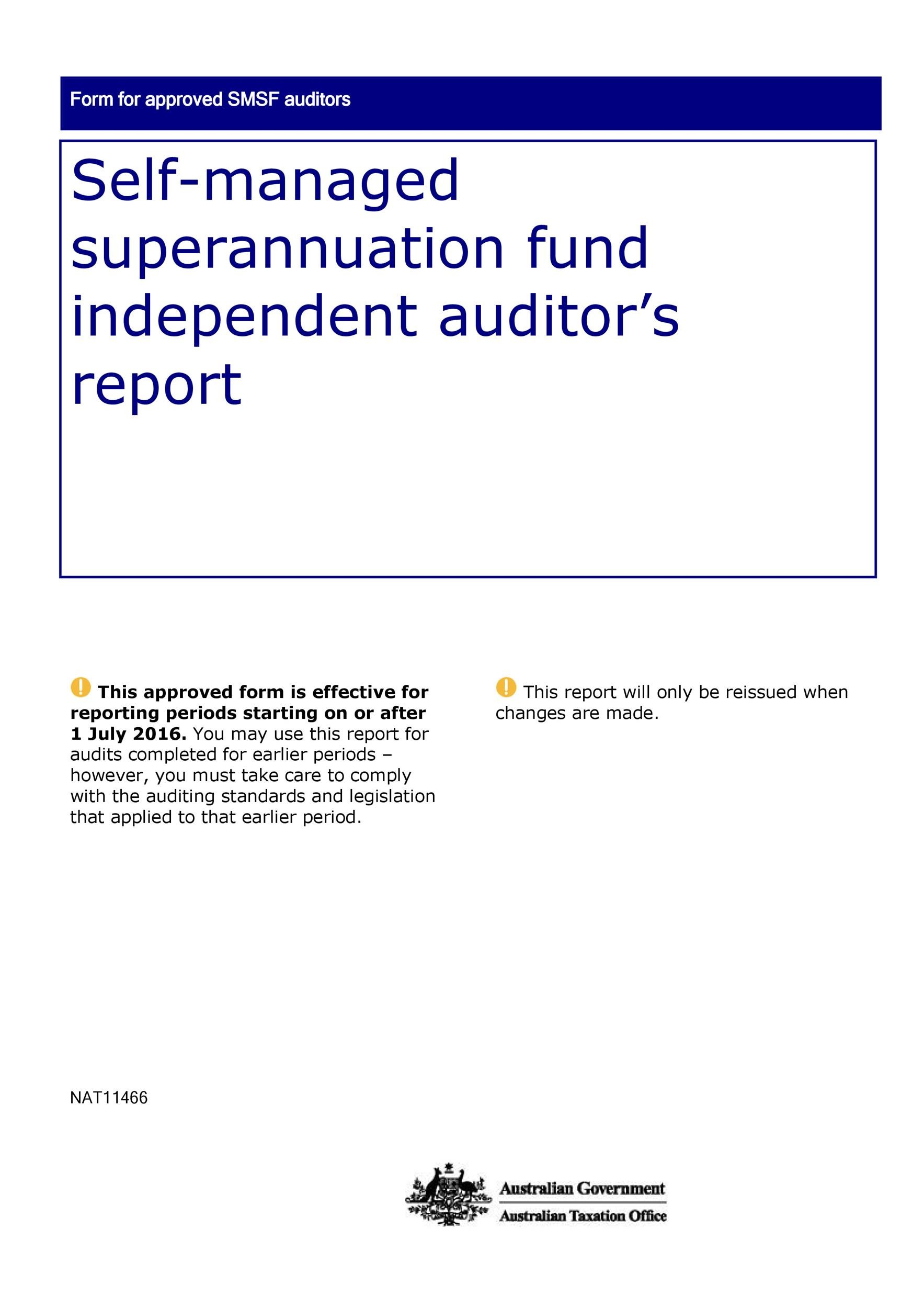Free audit report template 40