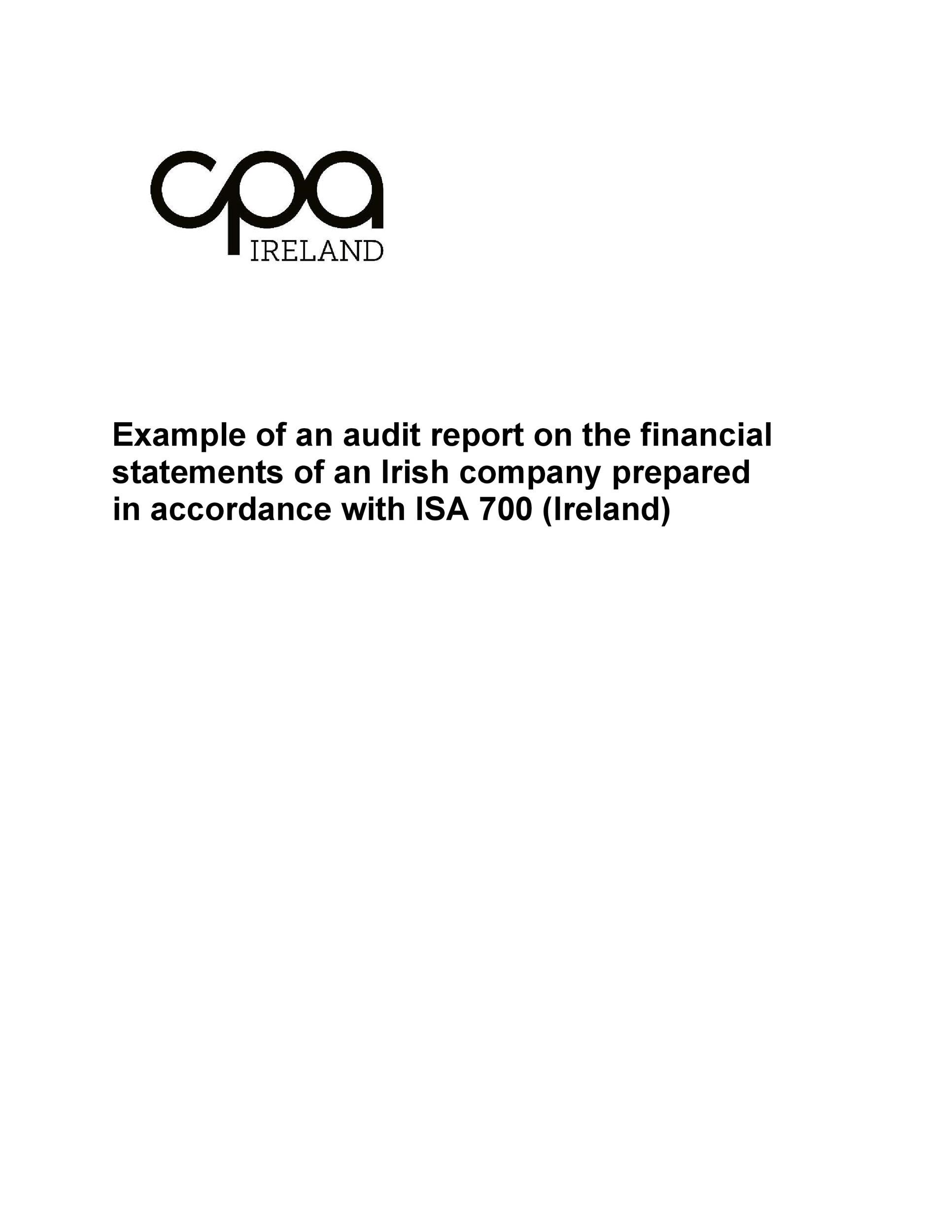 Free audit report template 50