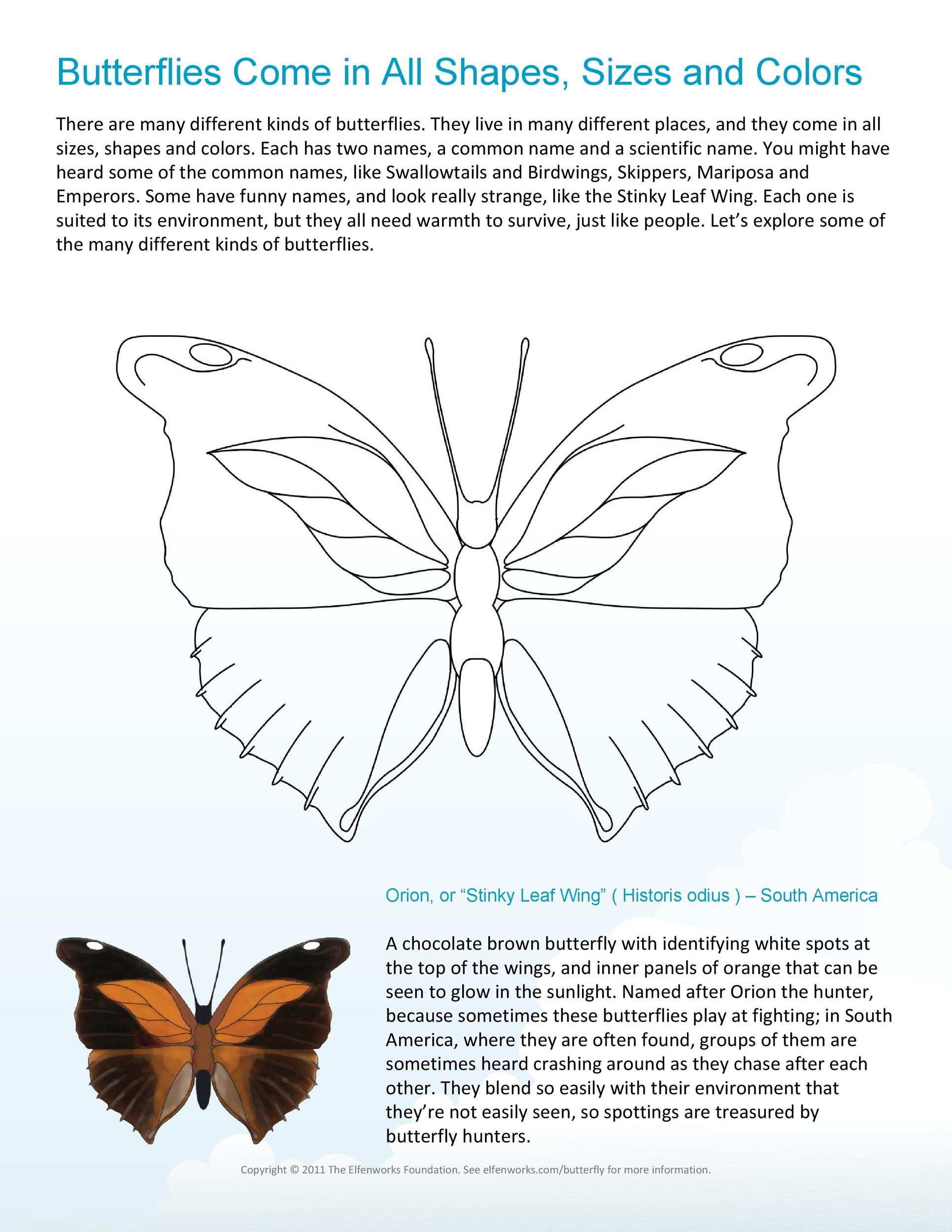 Free butterfly template 01