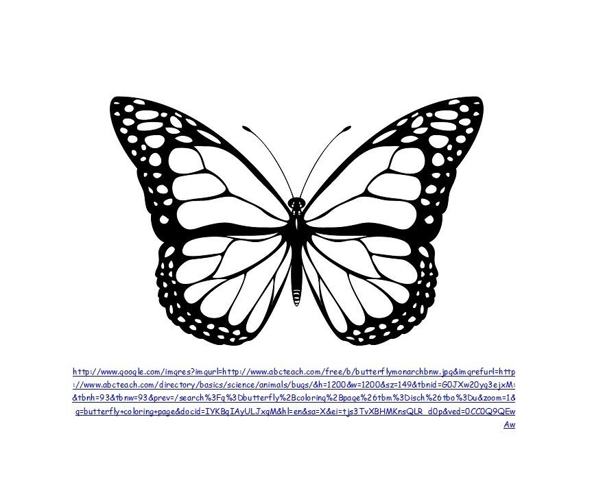 Free butterfly template 03