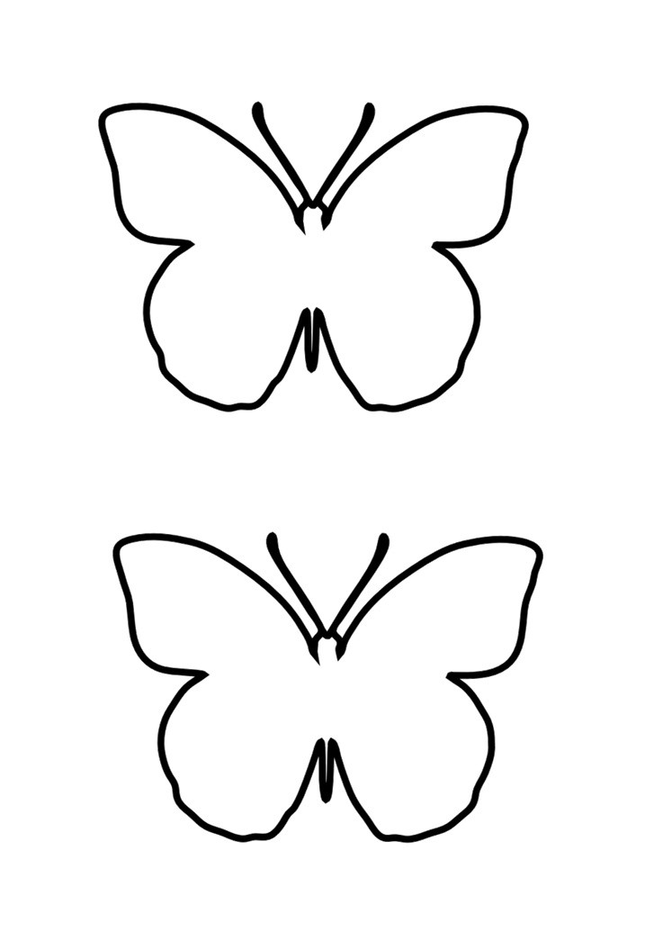 Free butterfly template 12