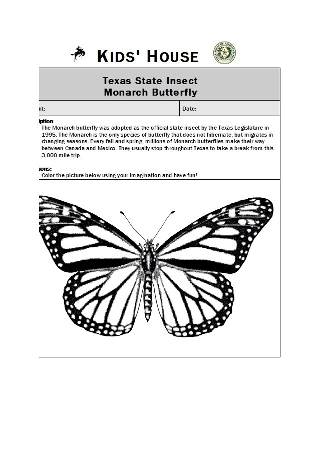 Free butterfly template 22