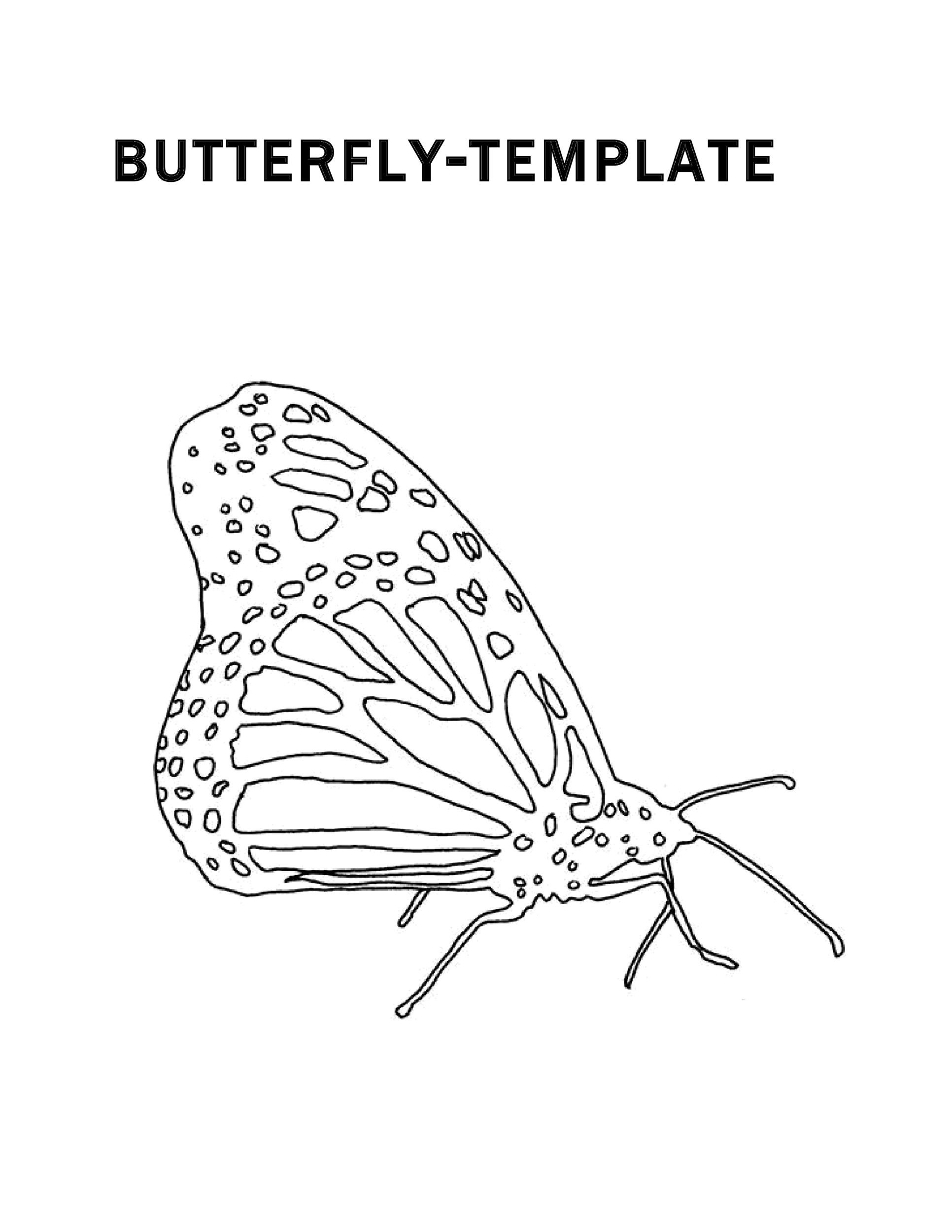 Free butterfly template 25