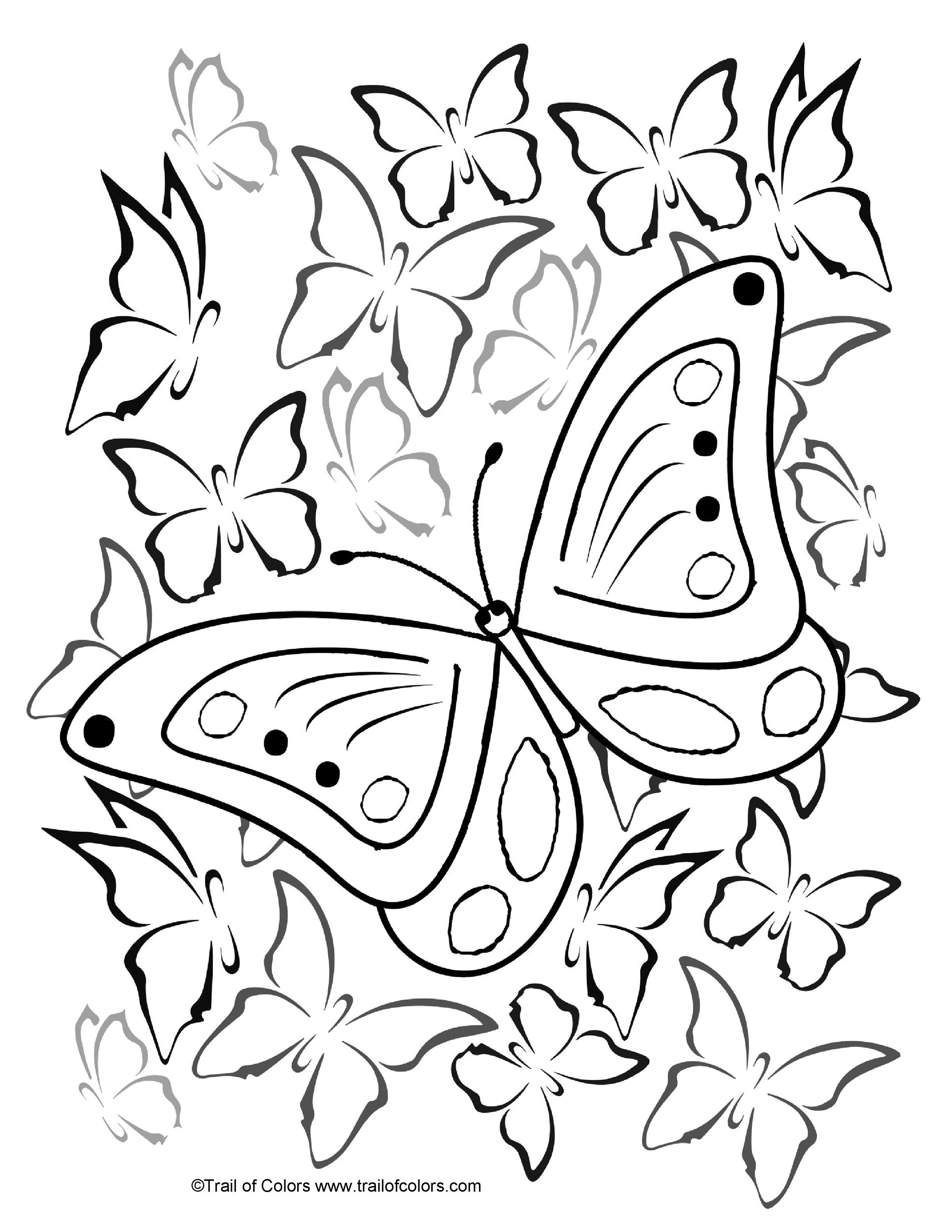 Free butterfly template 37