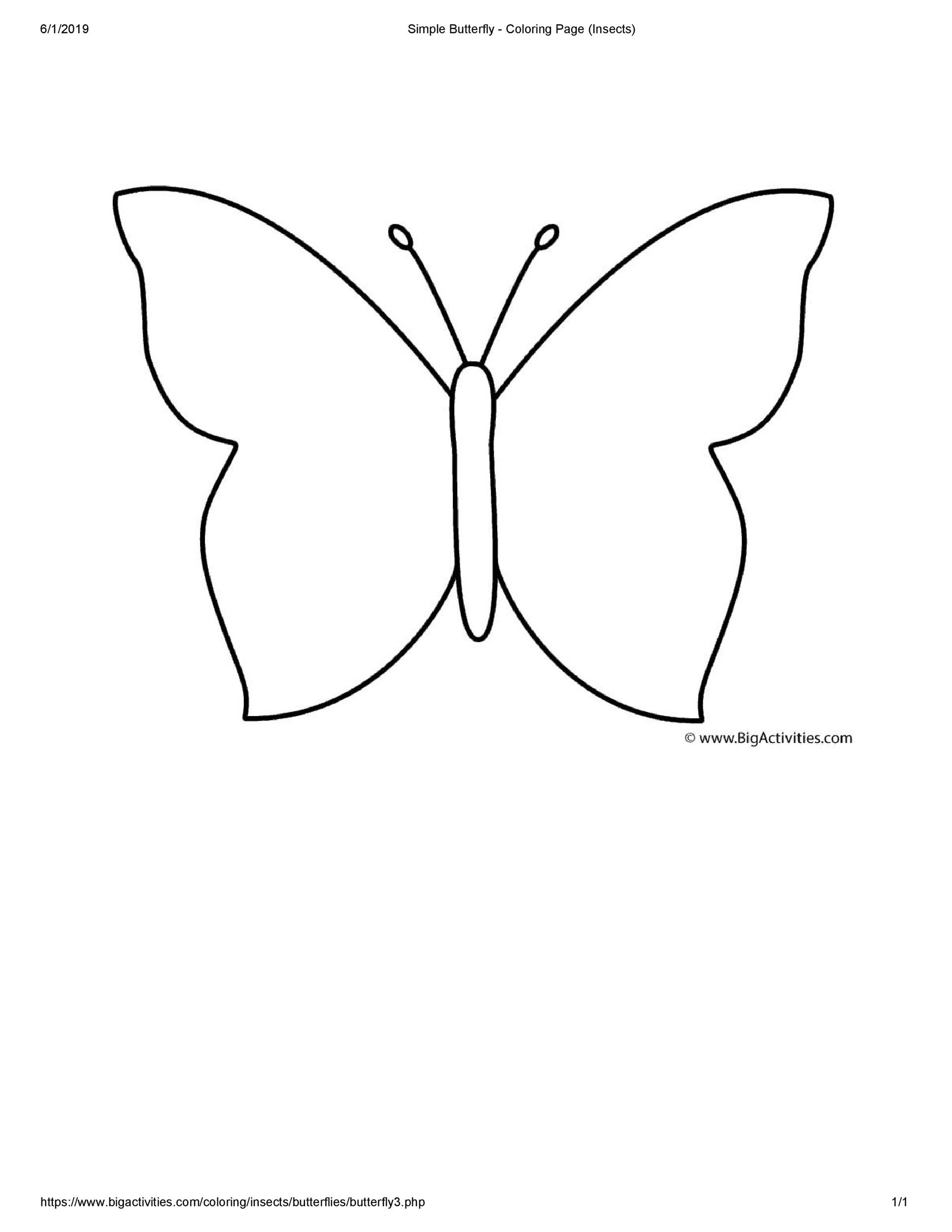 Free butterfly template 39