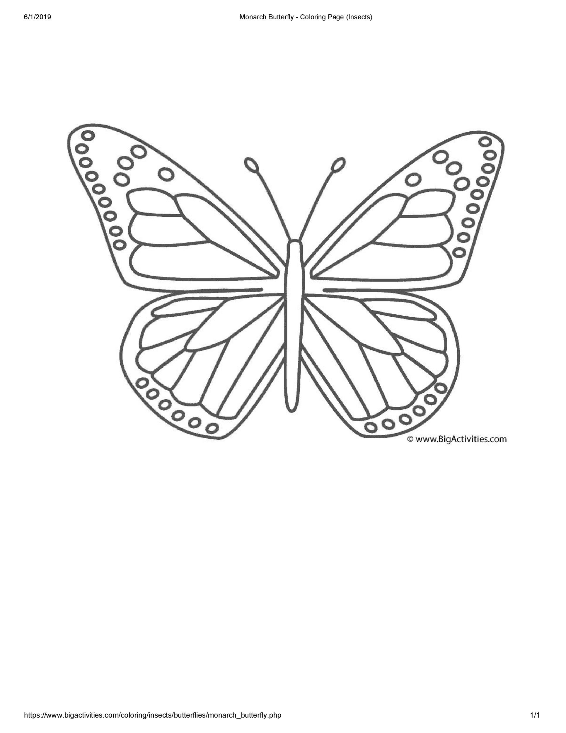 Free butterfly template 40