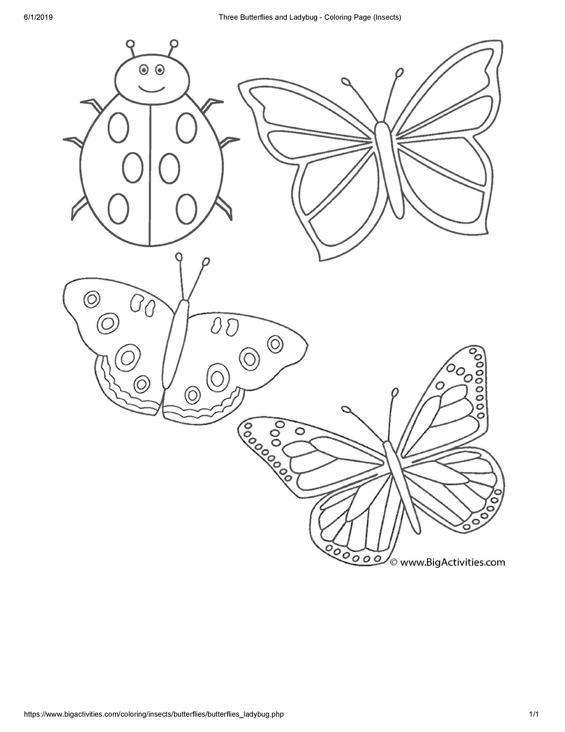 Free butterfly template 43