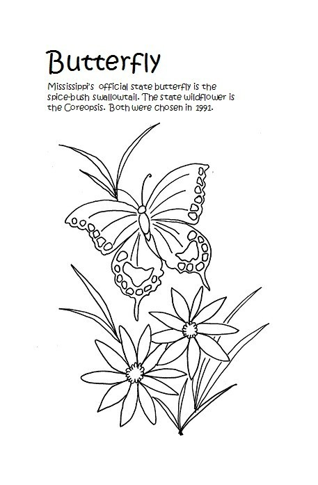 Free butterfly template 50