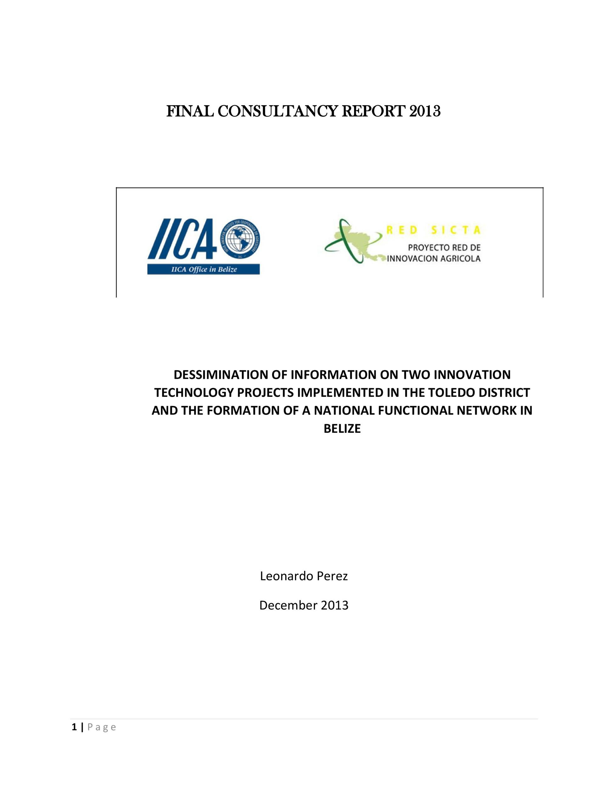 Free consulting report template 20