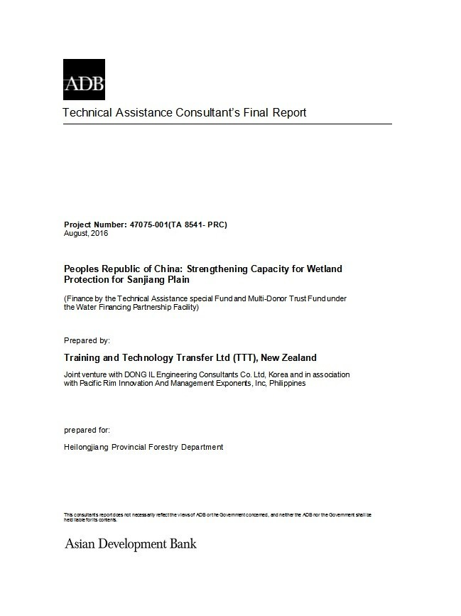 Free consulting report template 39