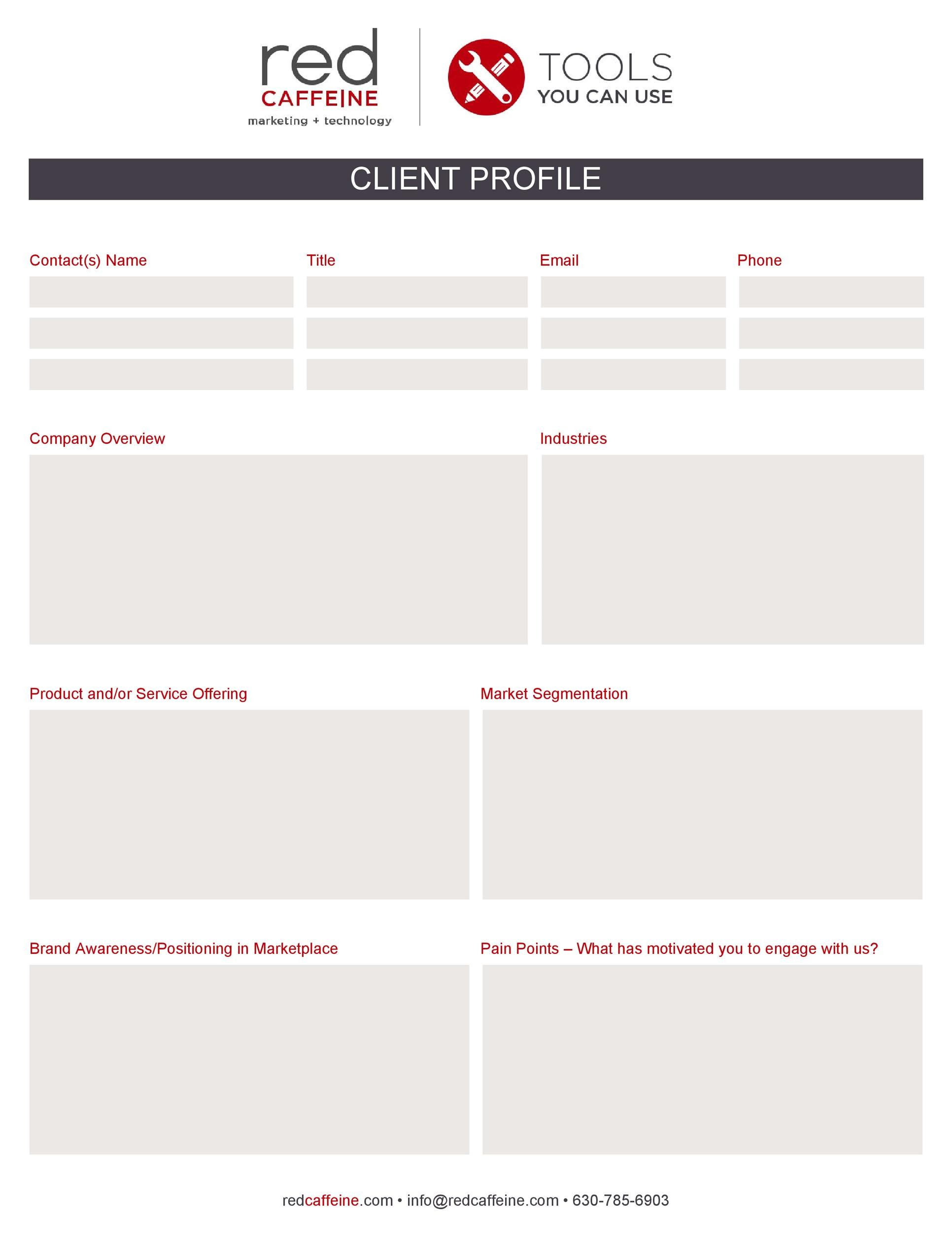 Free customer profile template 12
