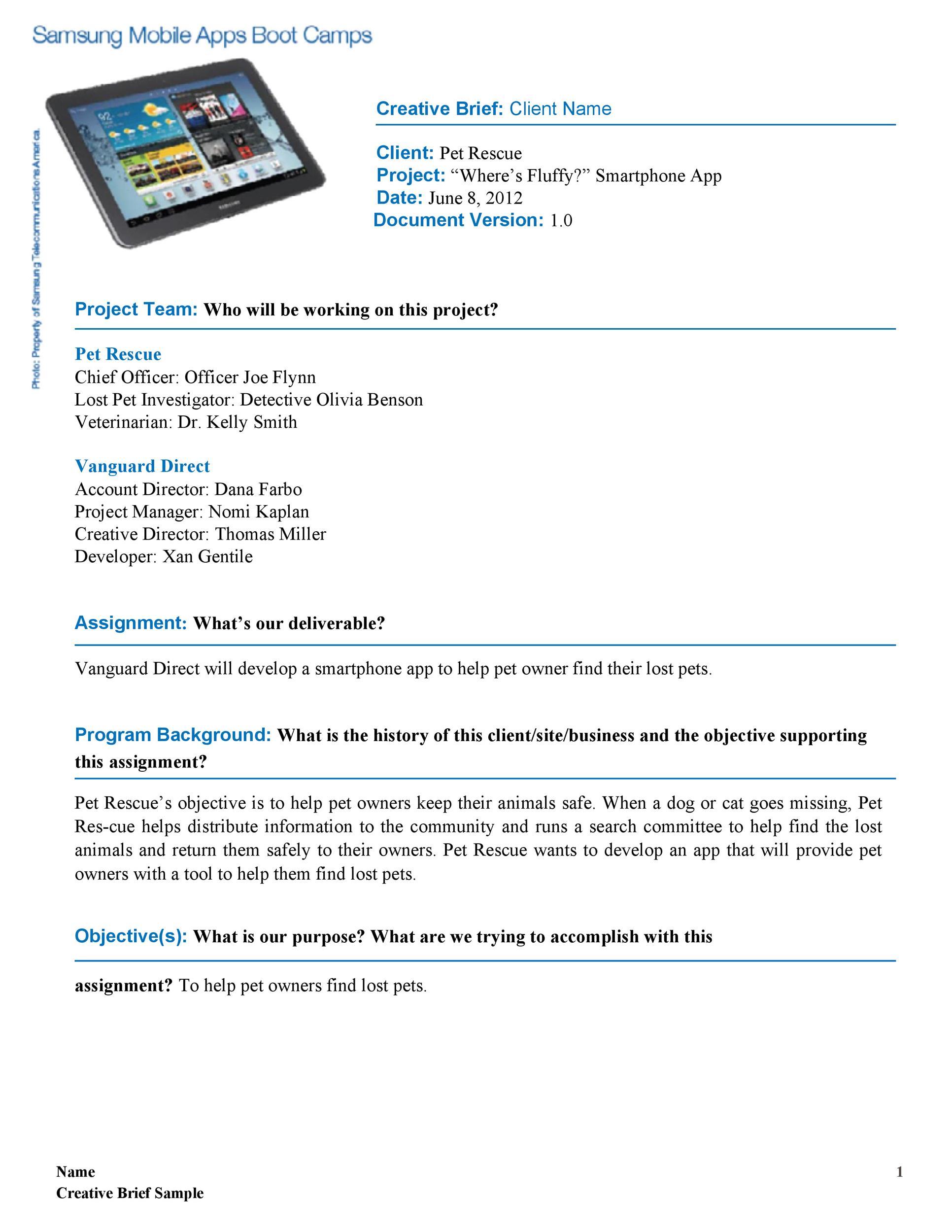 Free design brief template 47