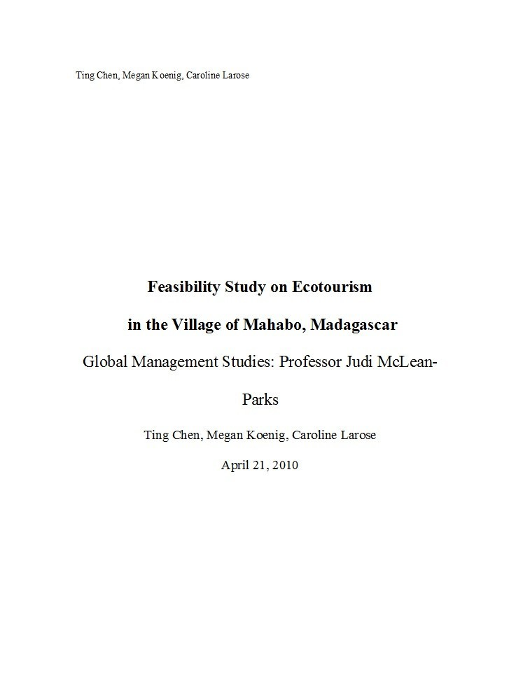 Free feasibility study example 14
