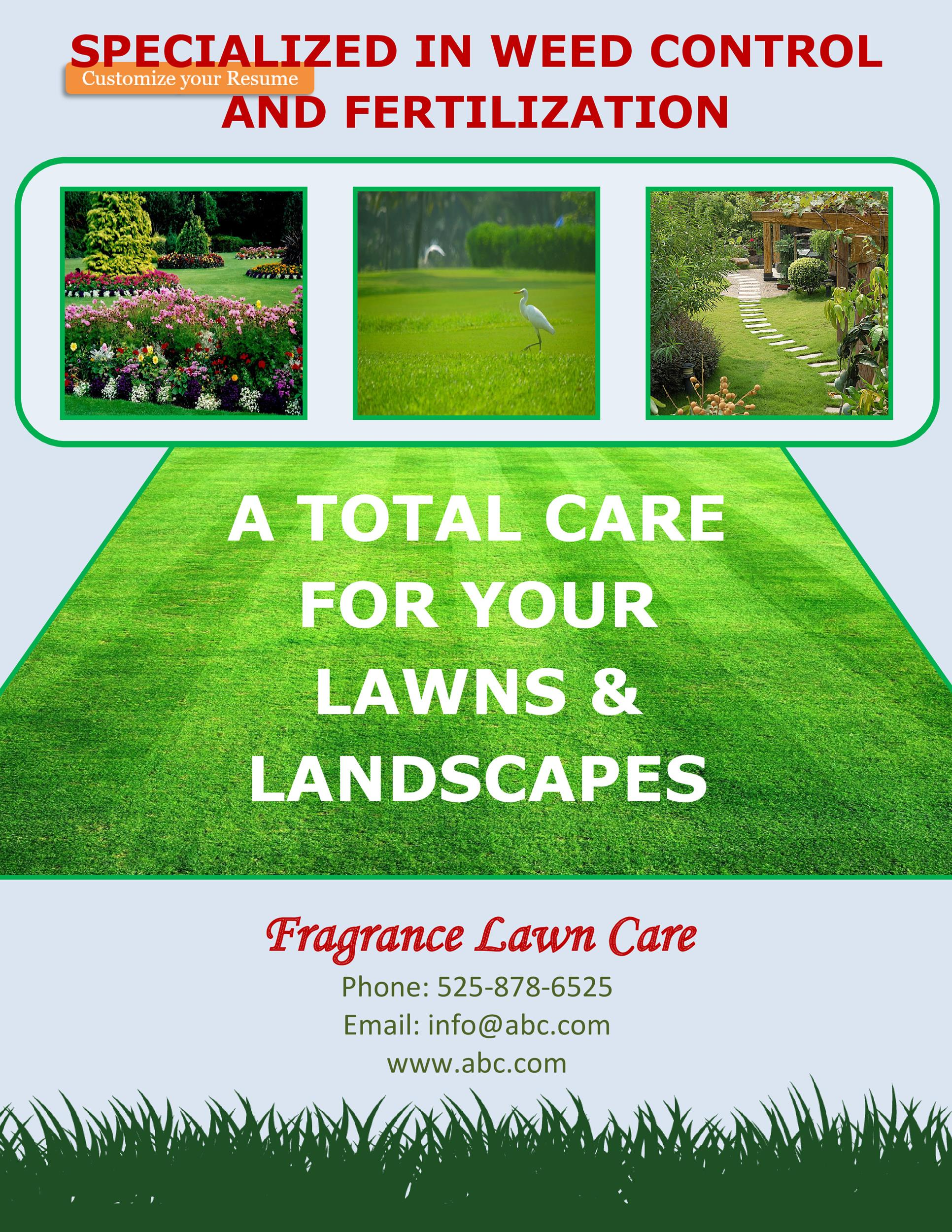 Free lawn care flyer 11