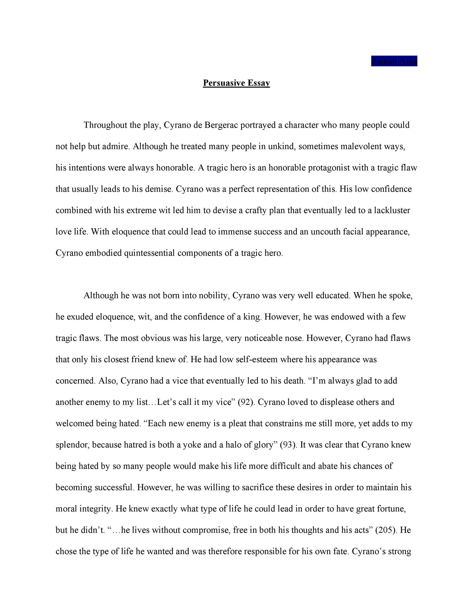 Free persuasive essay example 18