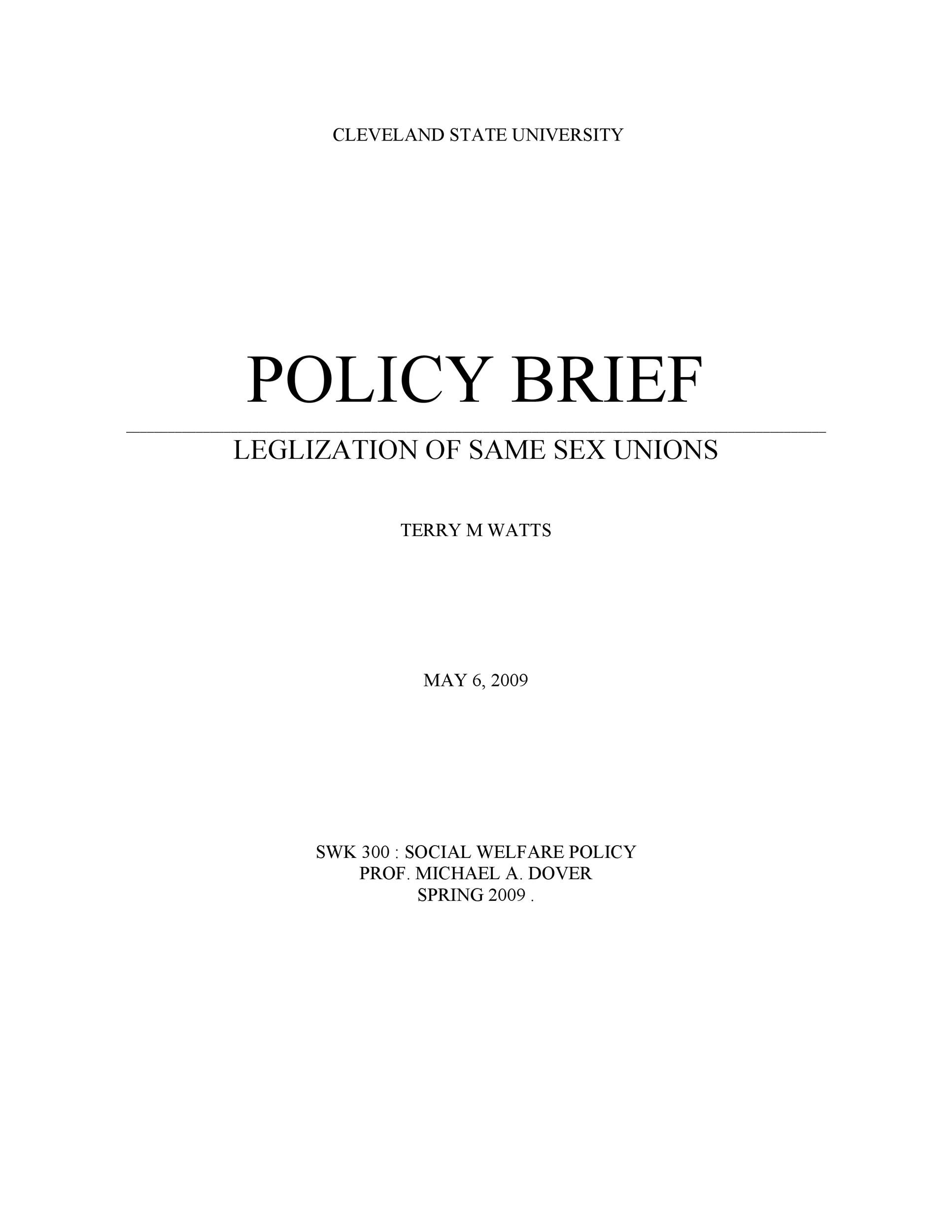 Free policy brief template 11