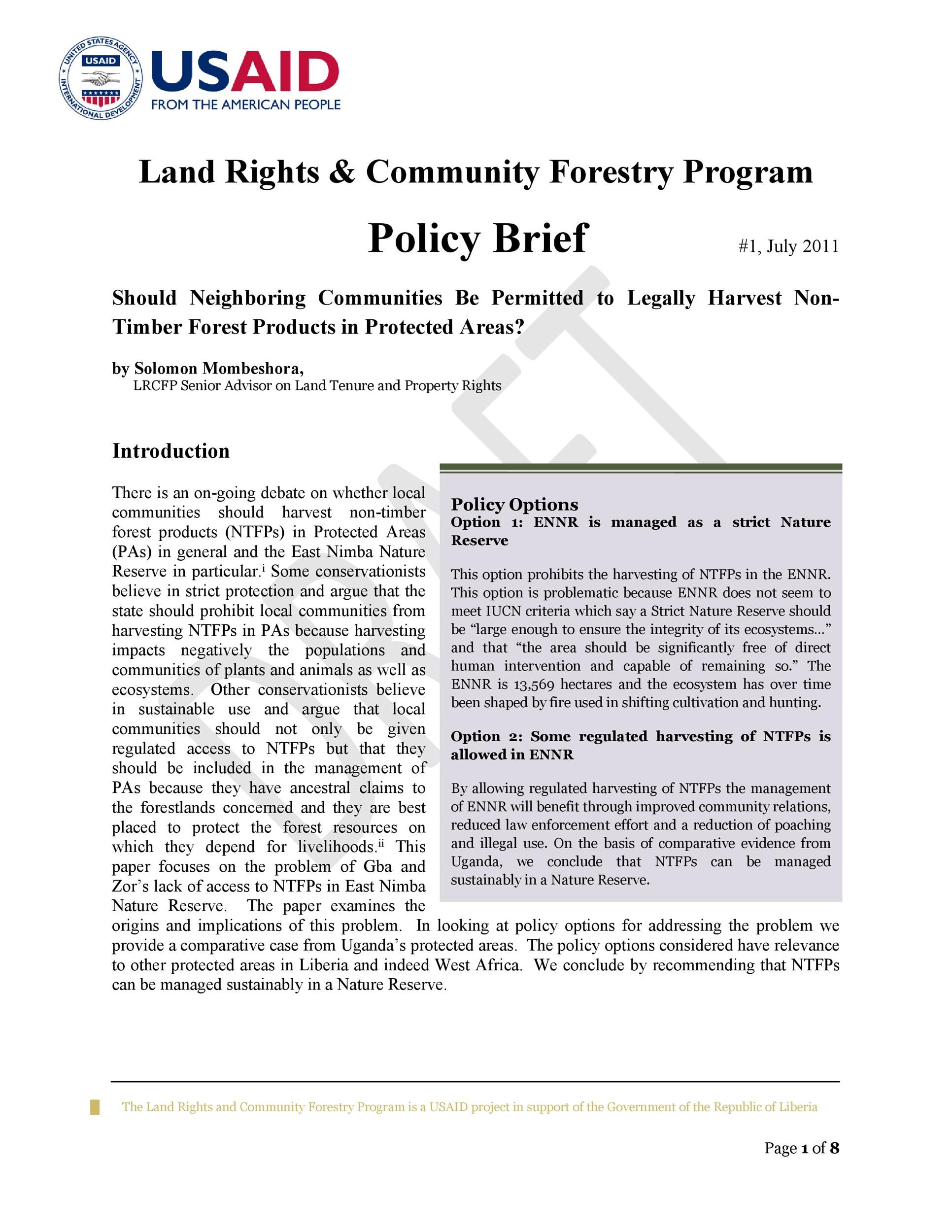 Free policy brief template 20