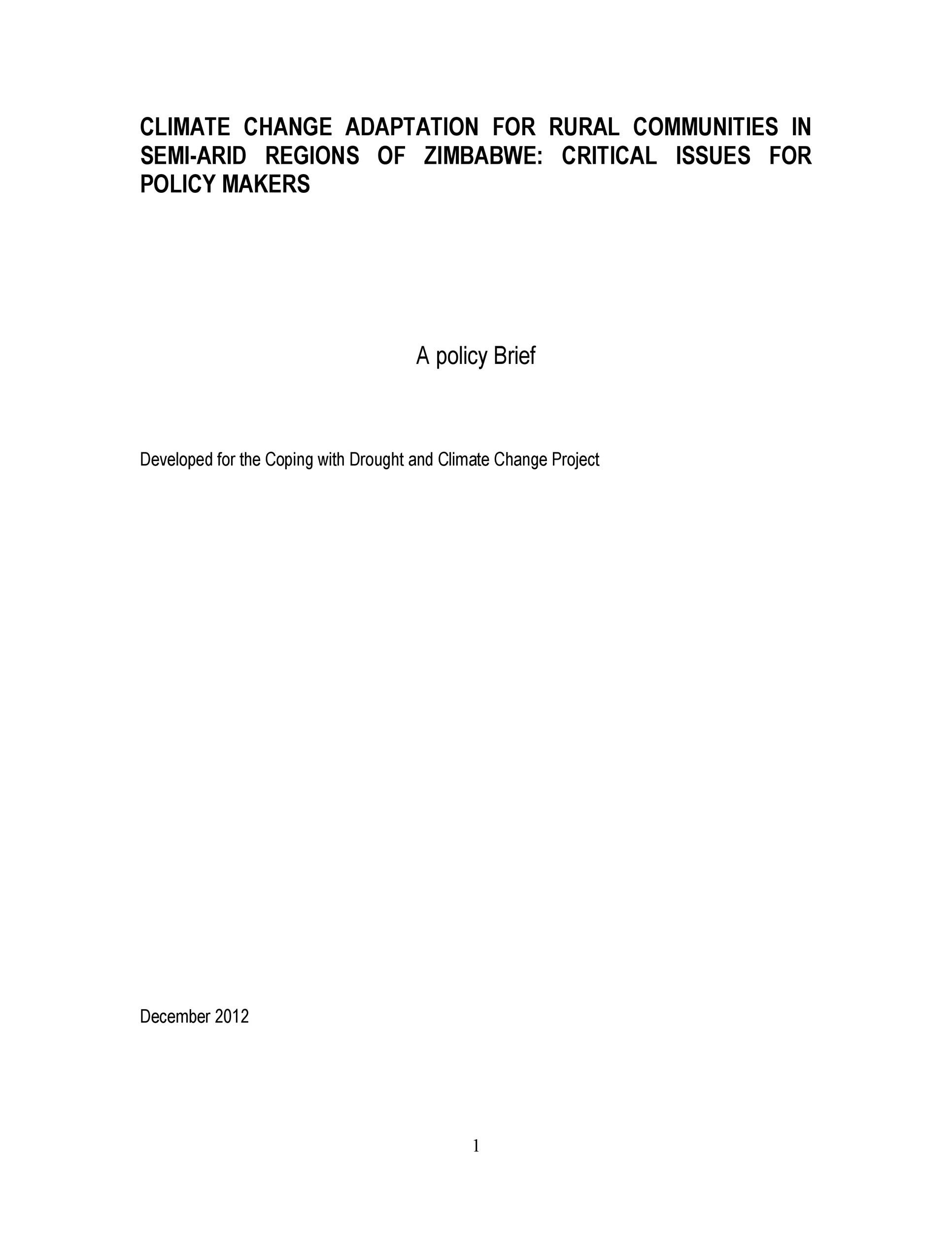 Free policy brief template 22
