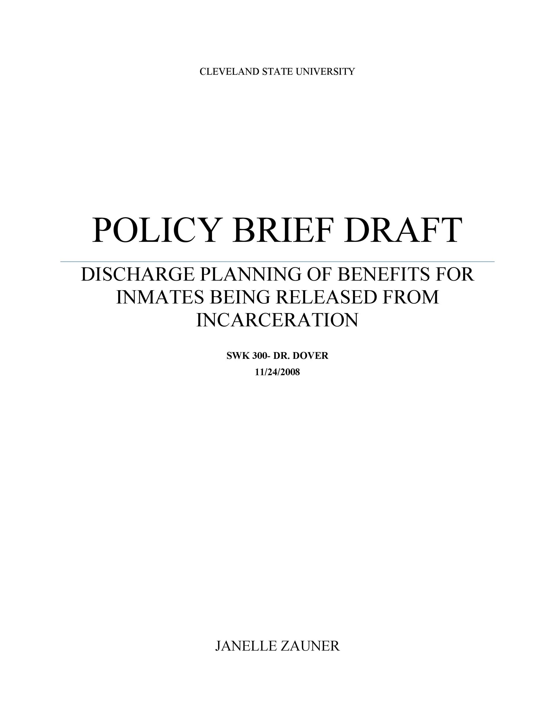 Free policy brief template 28