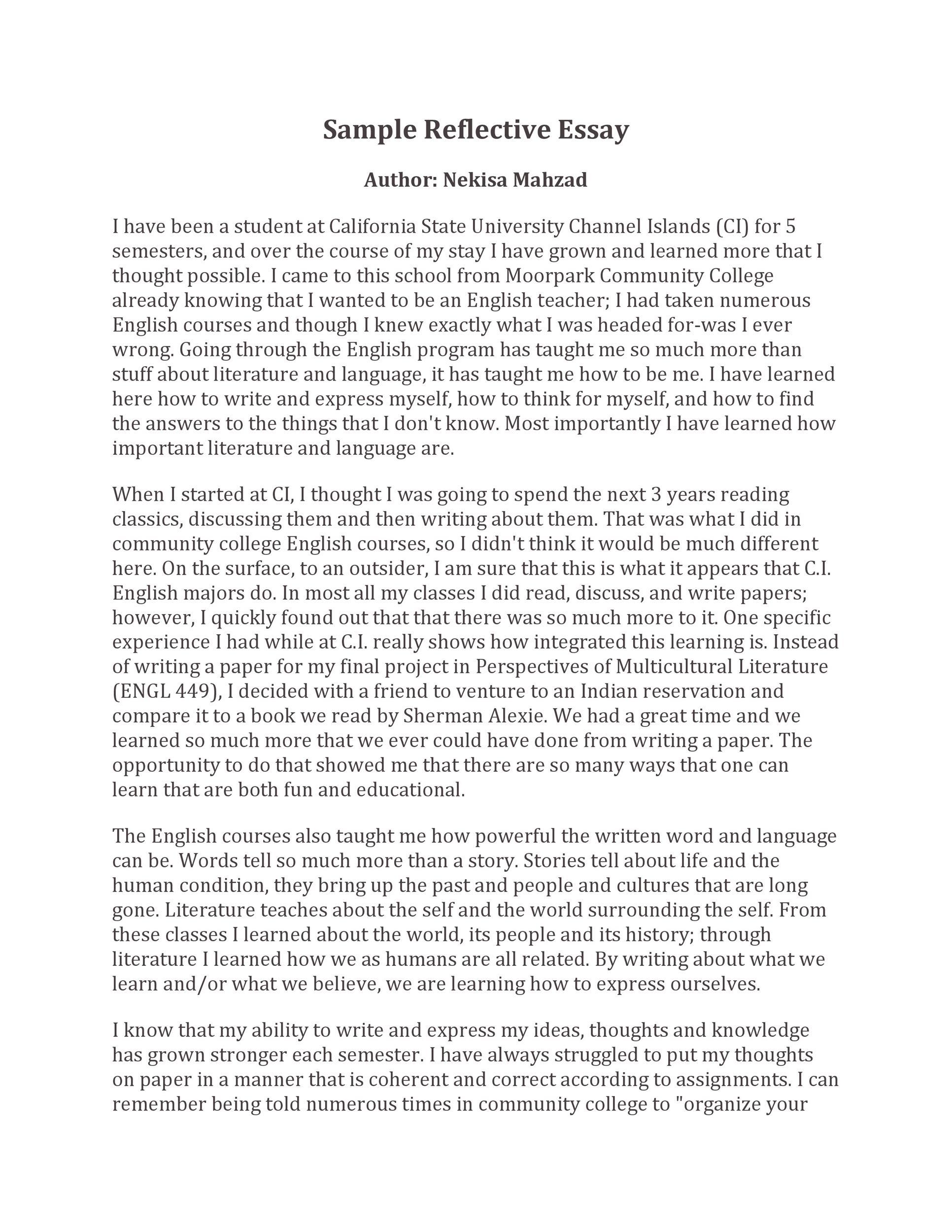 Free reflective essay example 45