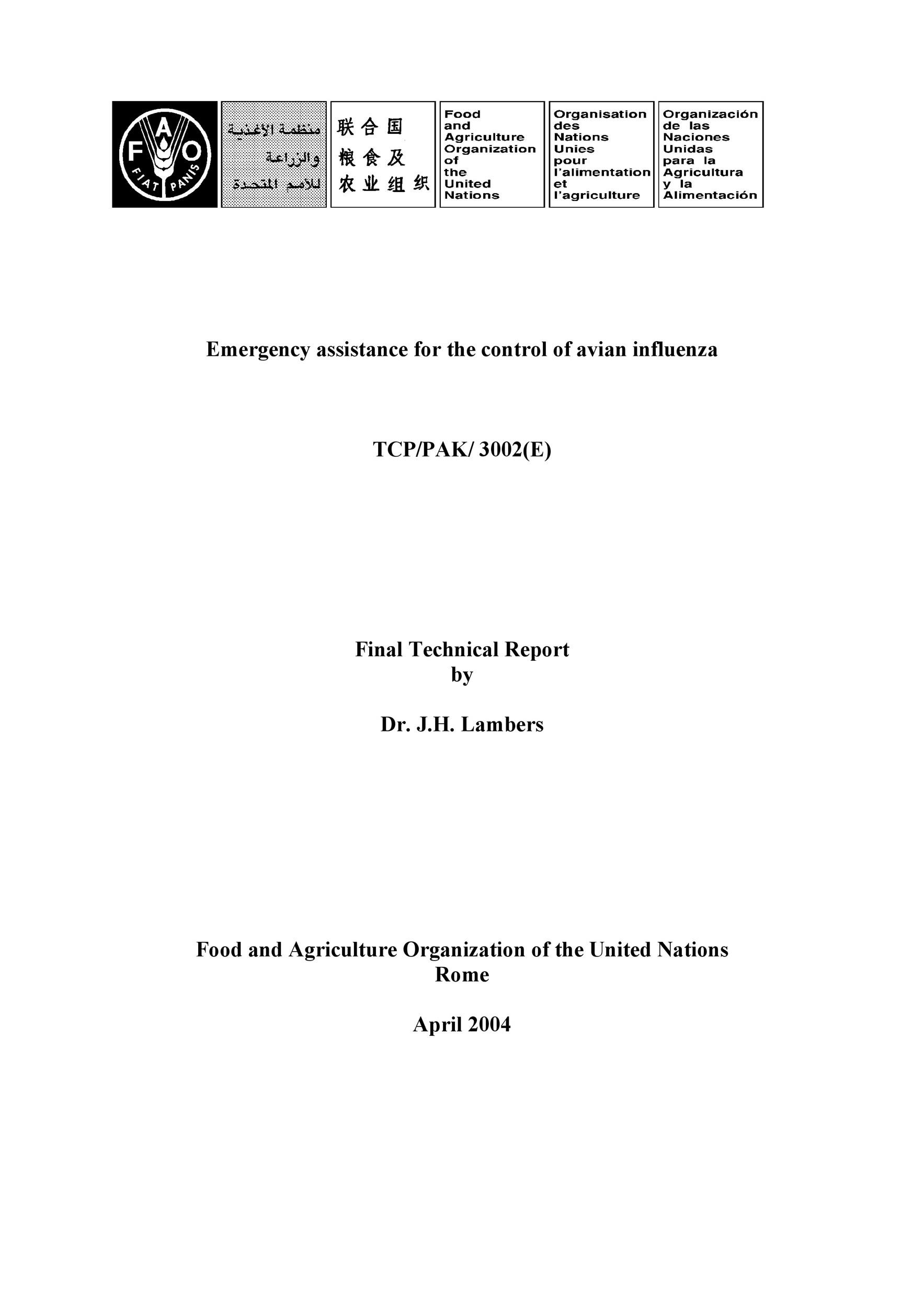 Free technical report template 16