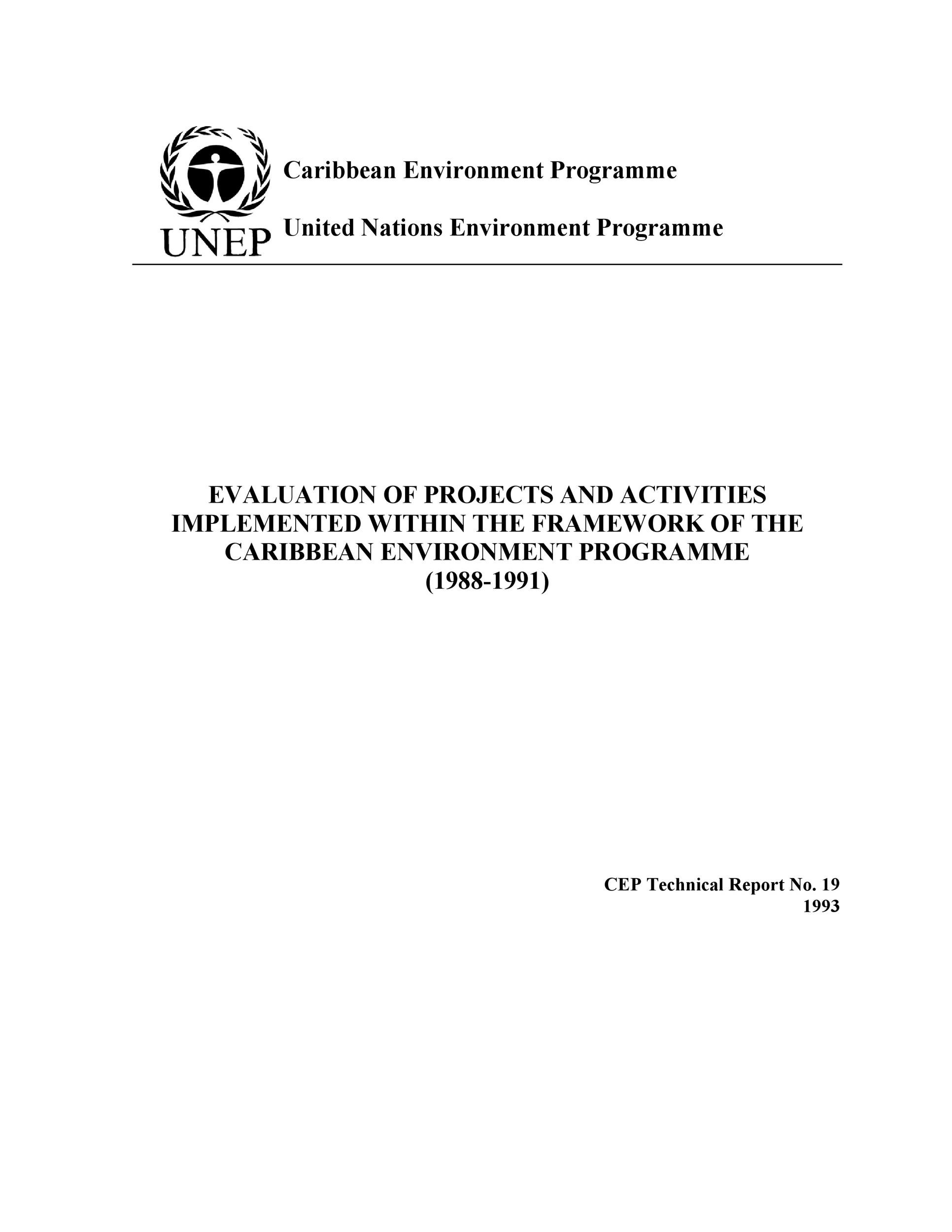 Free technical report template 23
