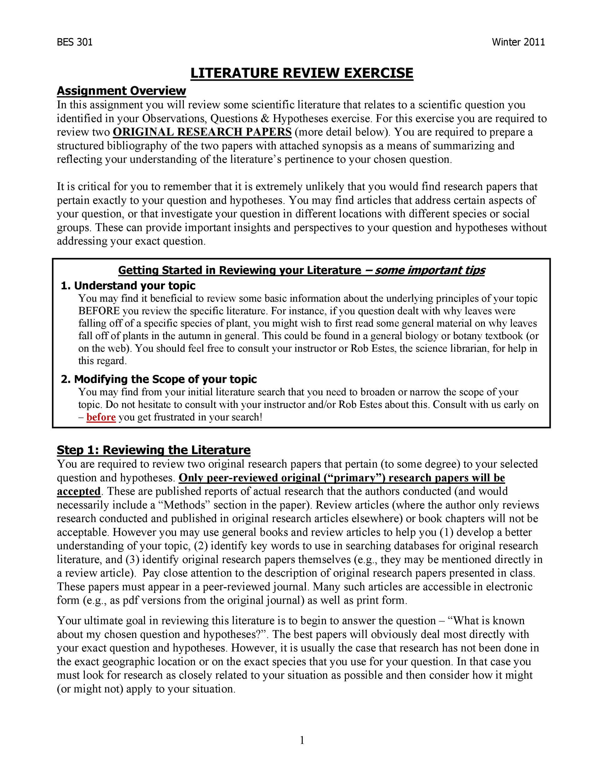 Free literature review template 24