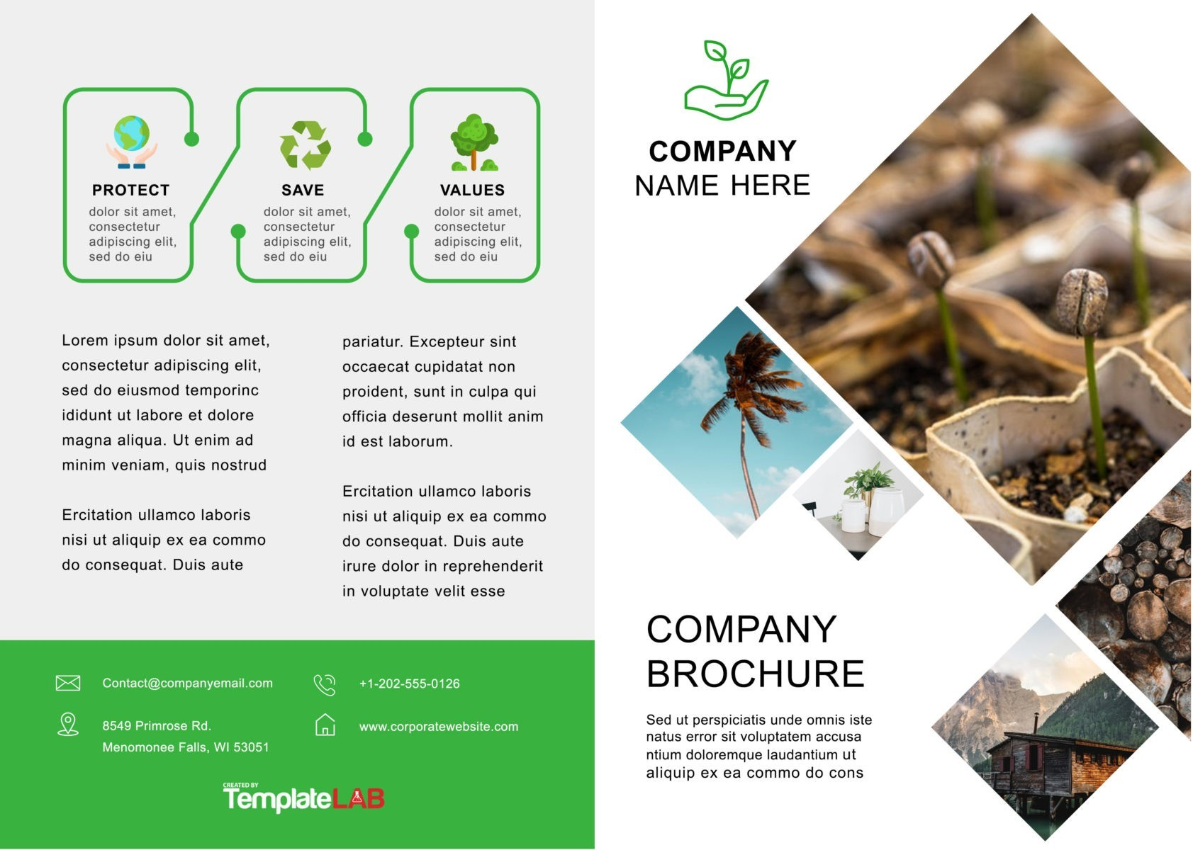 Download Brochure Template Word from templatelab.com