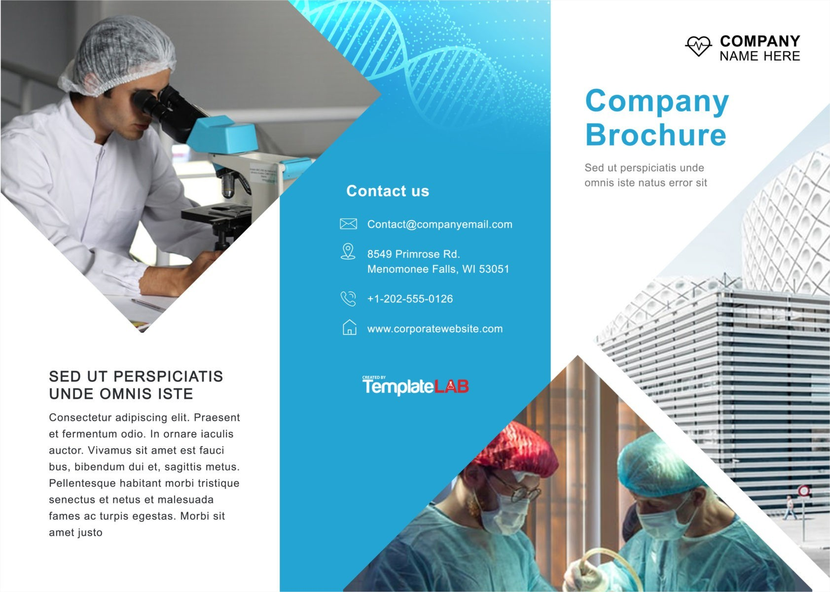 Free Trifold Brochure Template 02