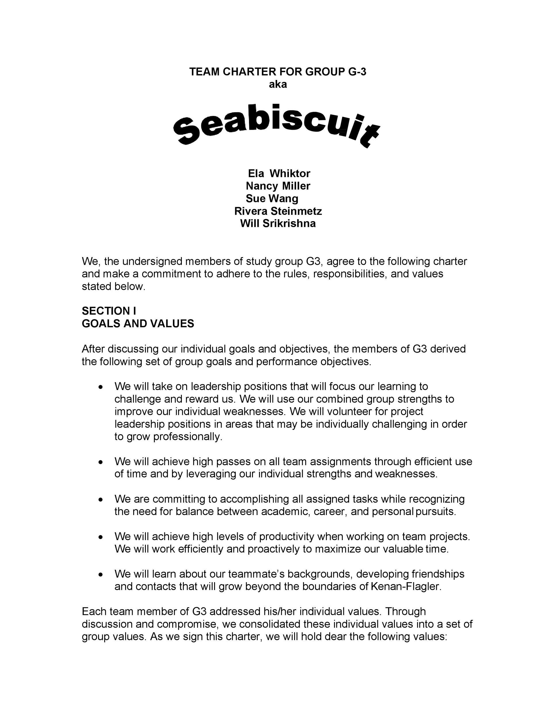 Free team charter template 24