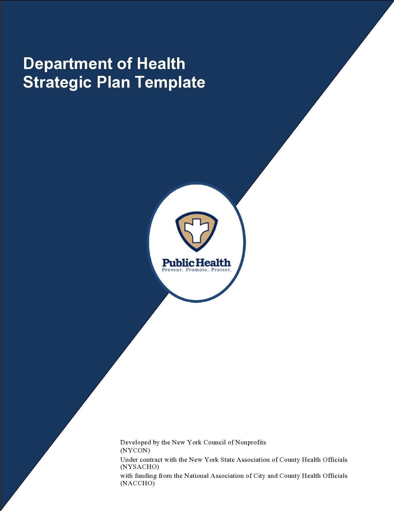 Free 5 year plan template 22