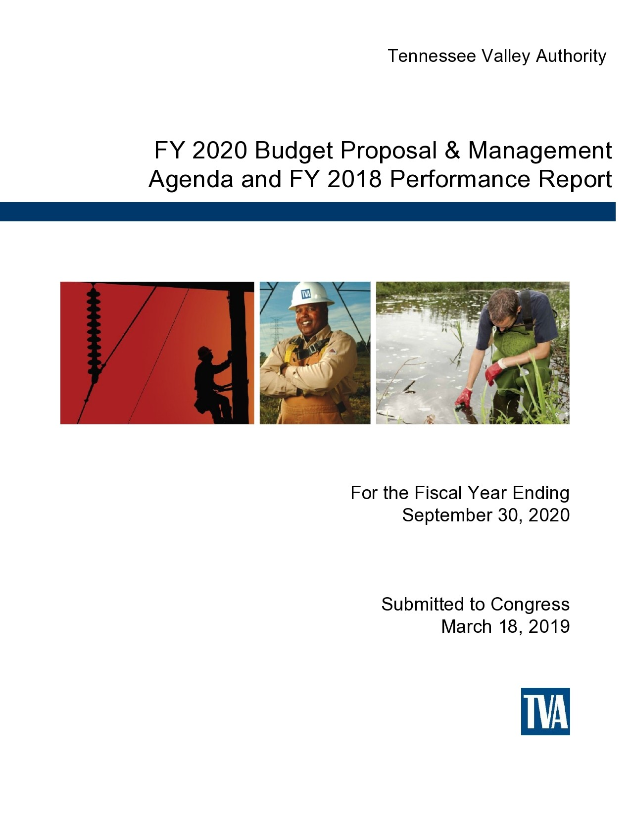 Free budget proposal template 46