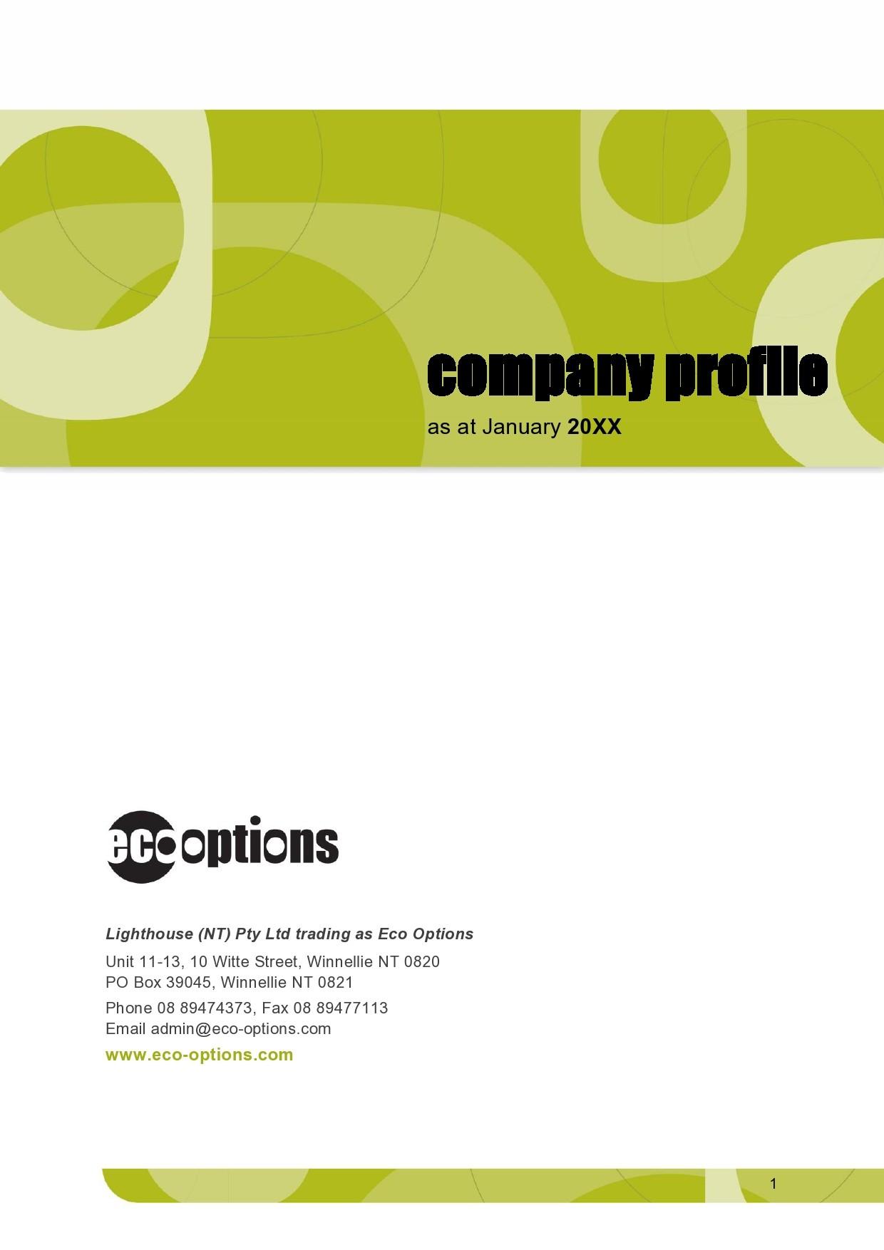 Free company profile template 01