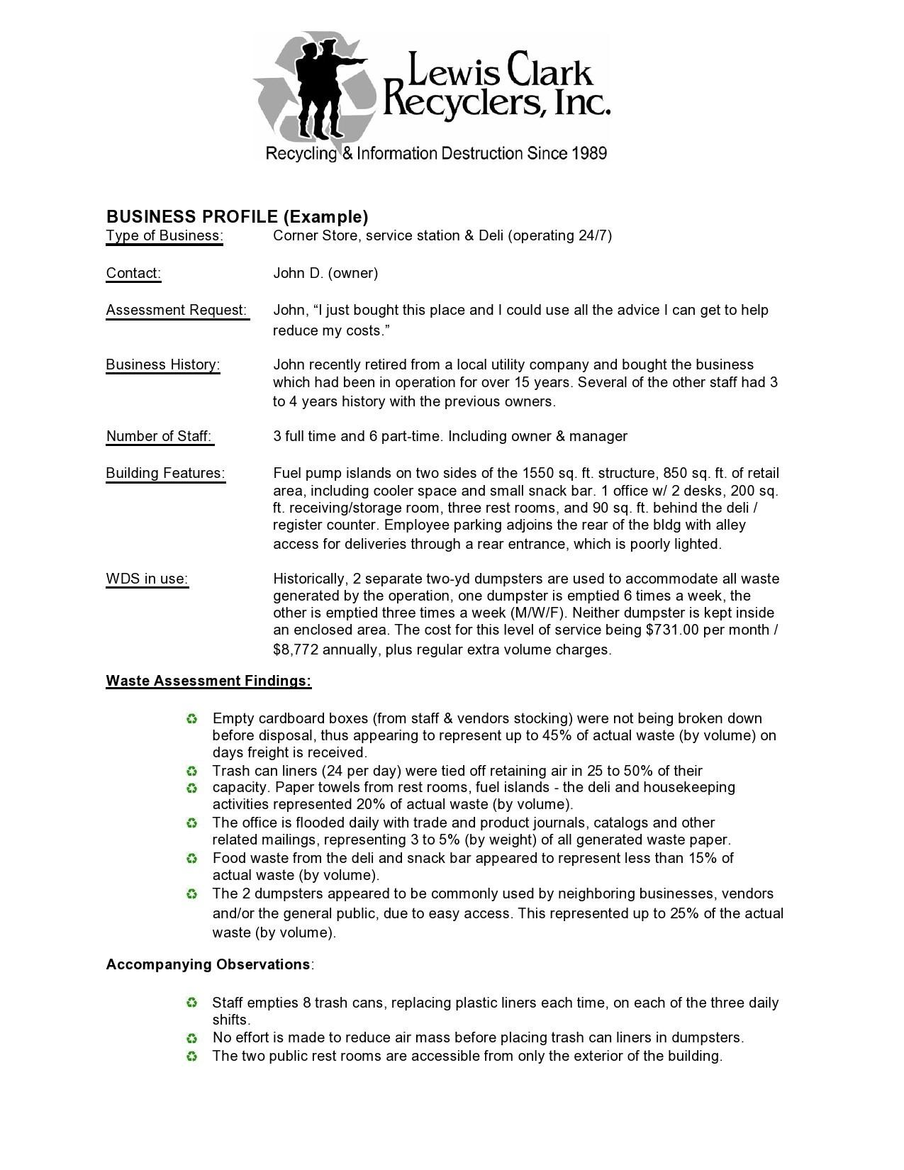 Free company profile template 02