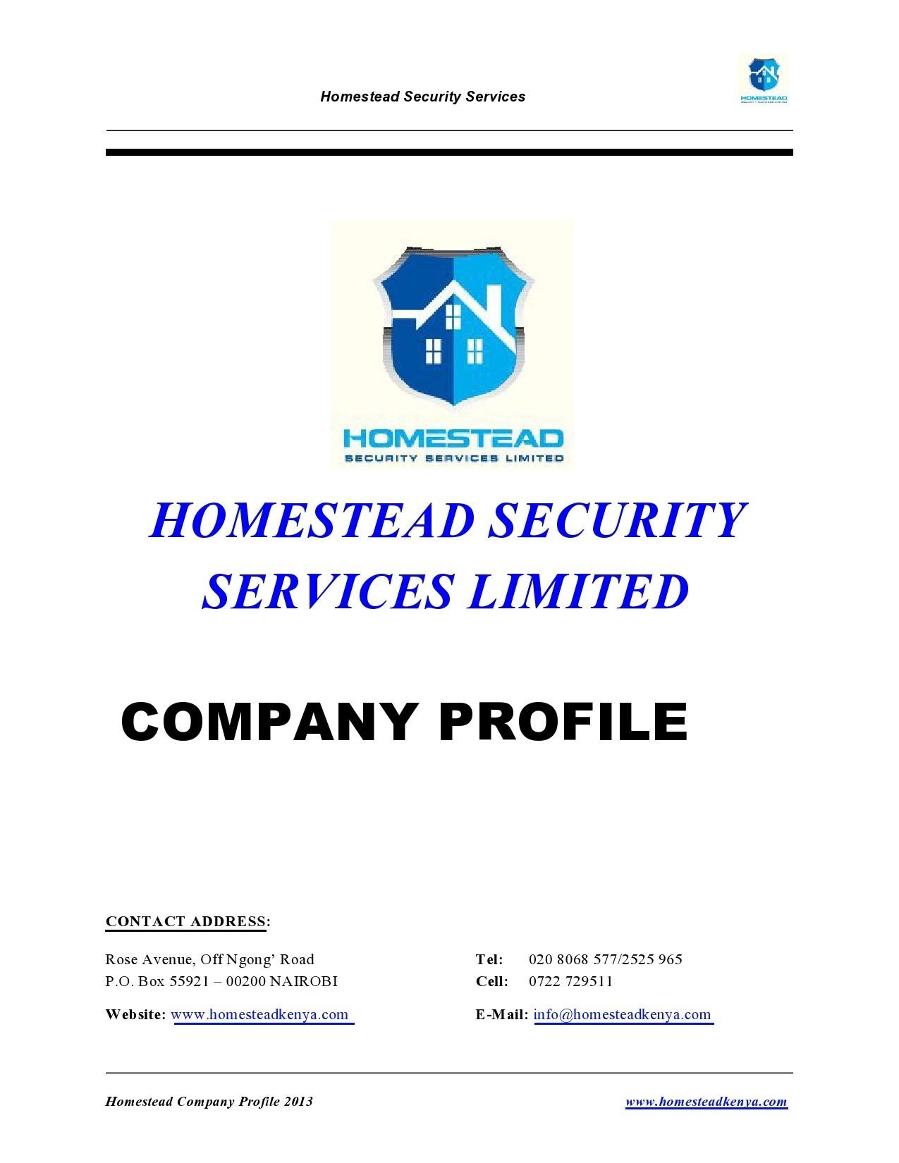Free company profile template 09