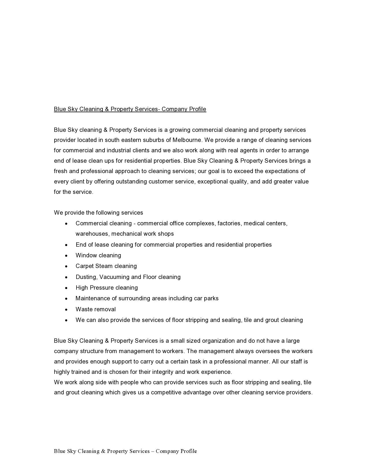 Free company profile template 29