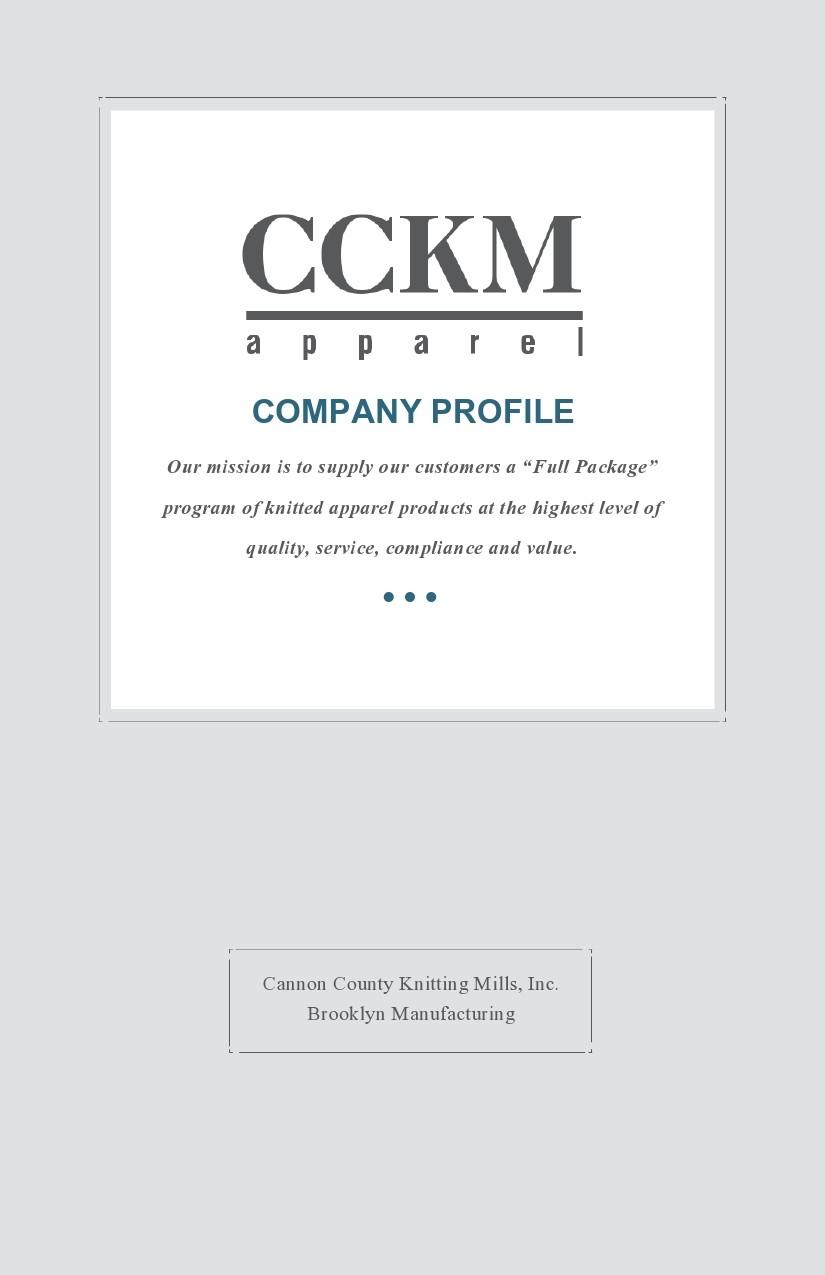 Free company profile template 41