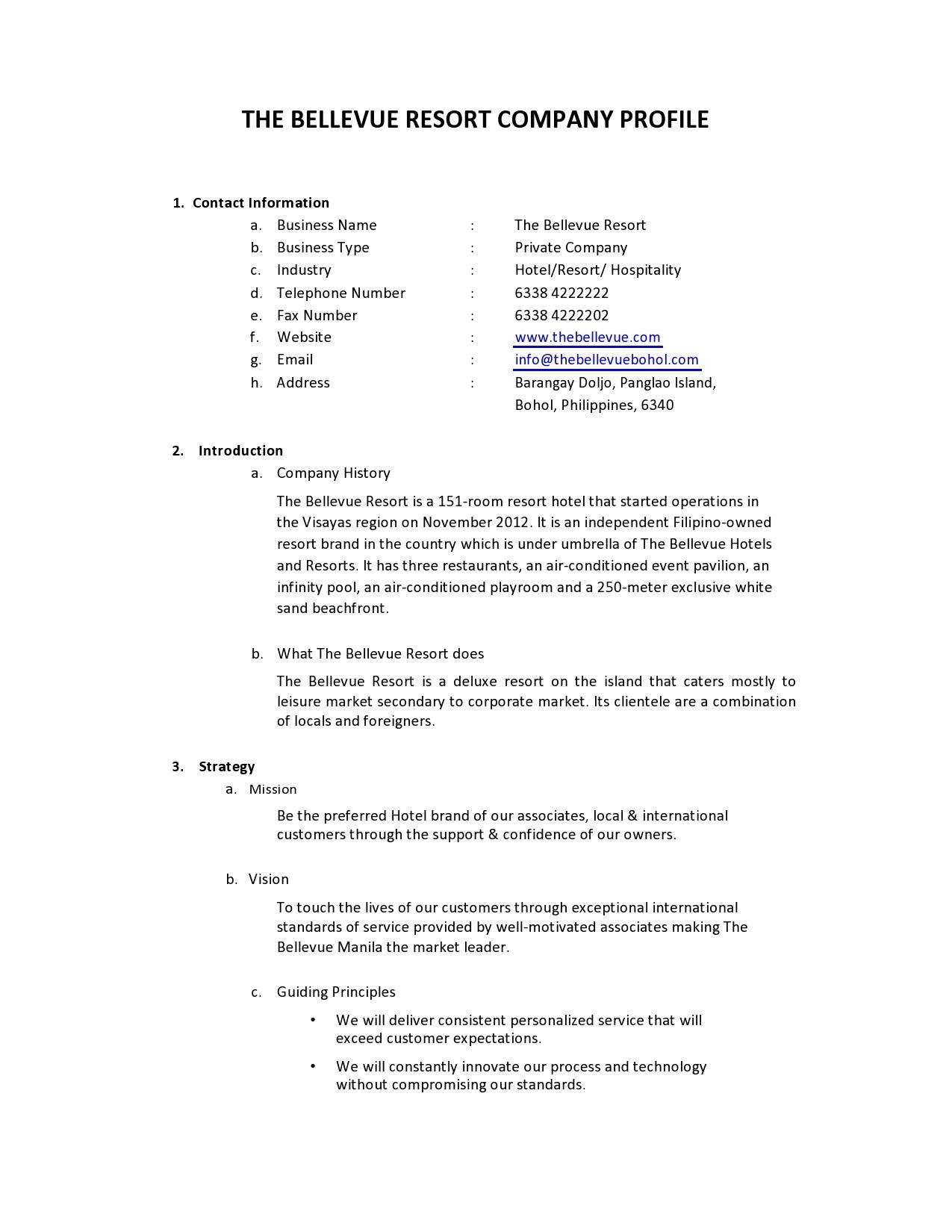 Free company profile template 43