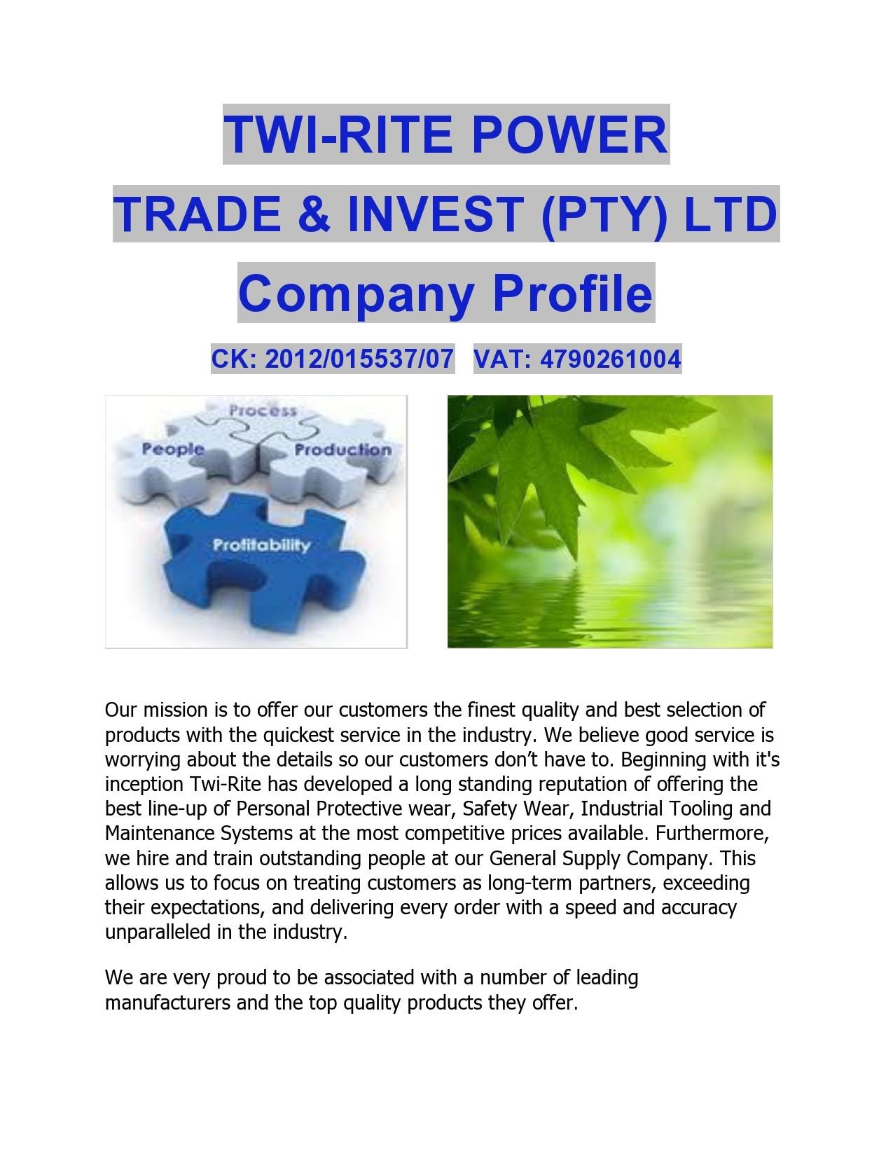 Free company profile template 45