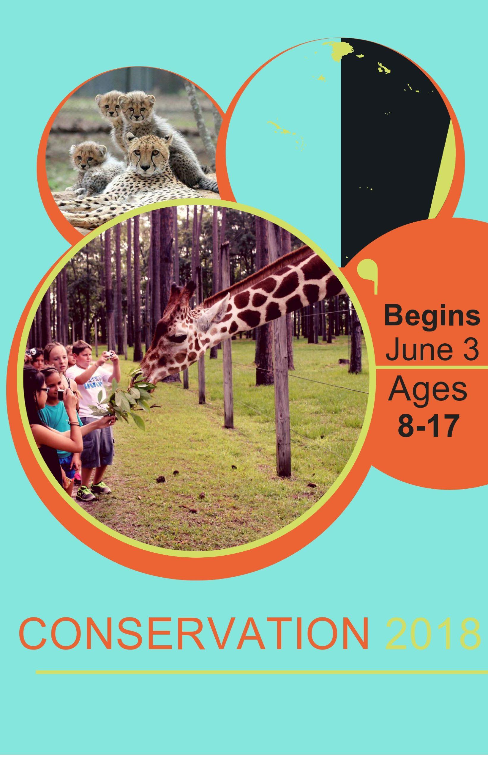 Free summer camp flyer 36