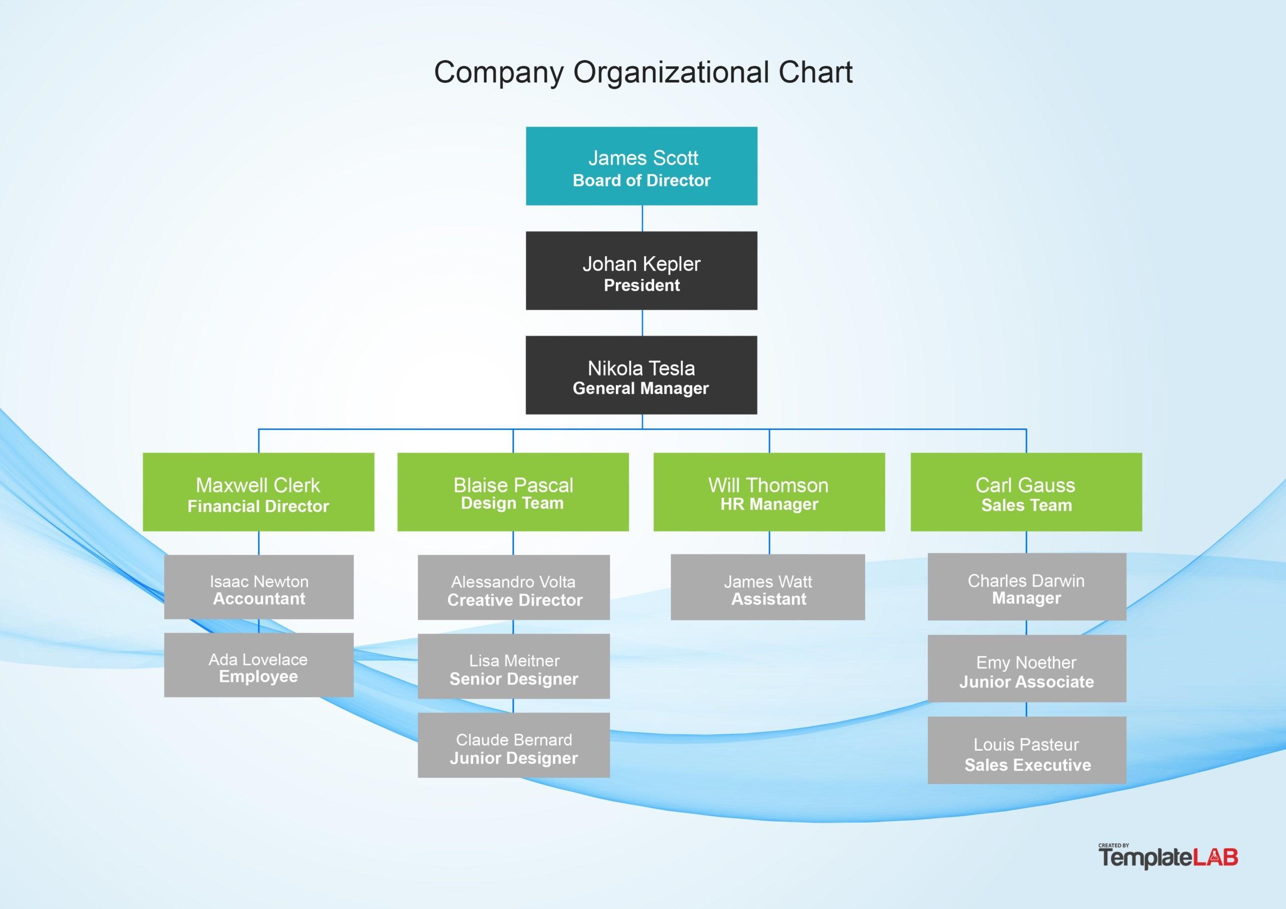 Free Company Organizational Chart 1
