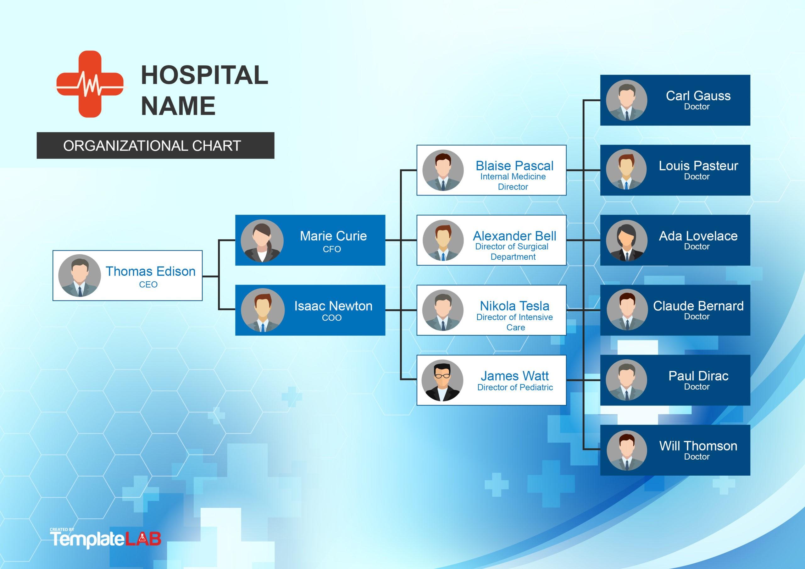 Free Hospital Organizational Chart 1
