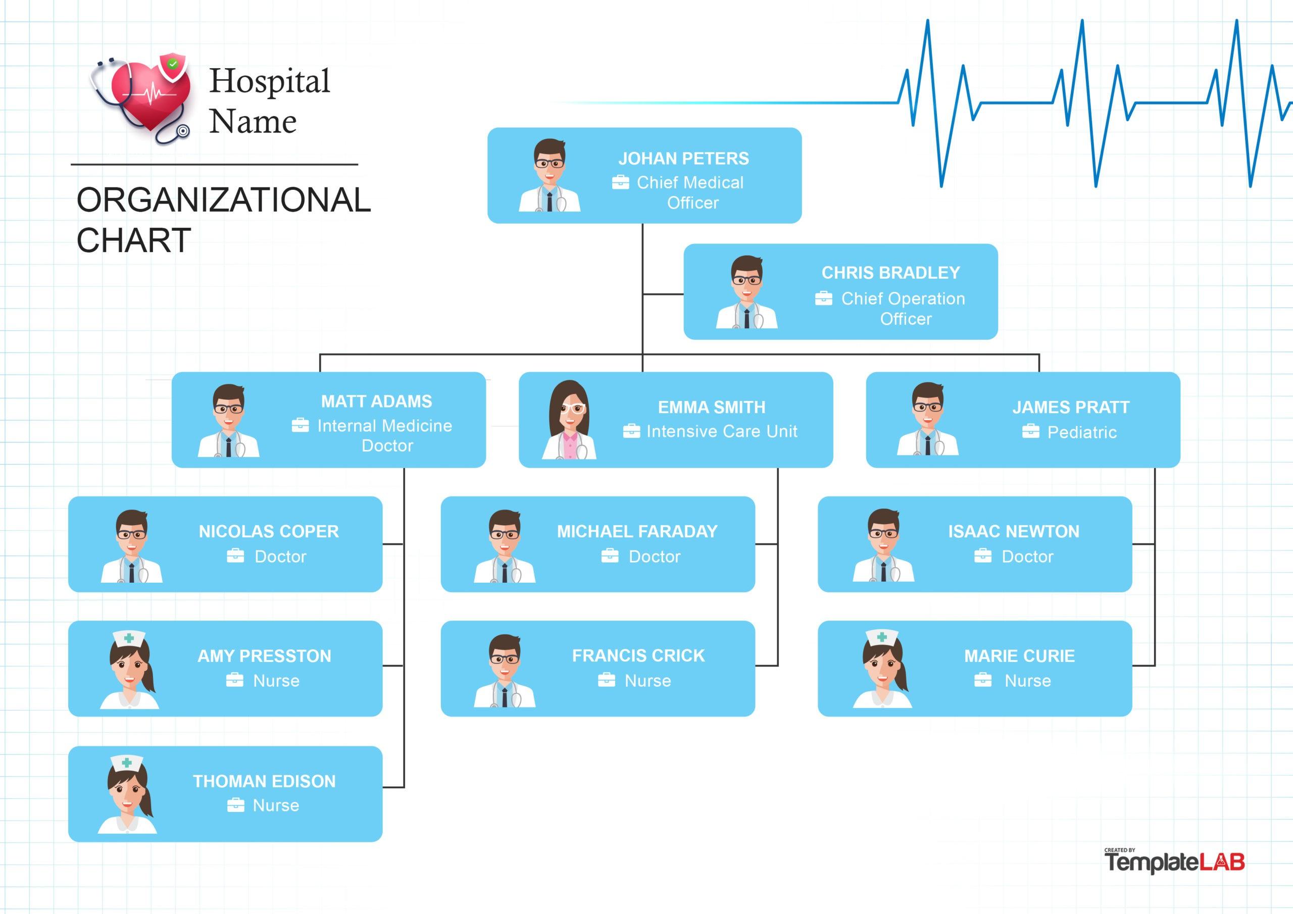Free Hospital Organizational Chart 2