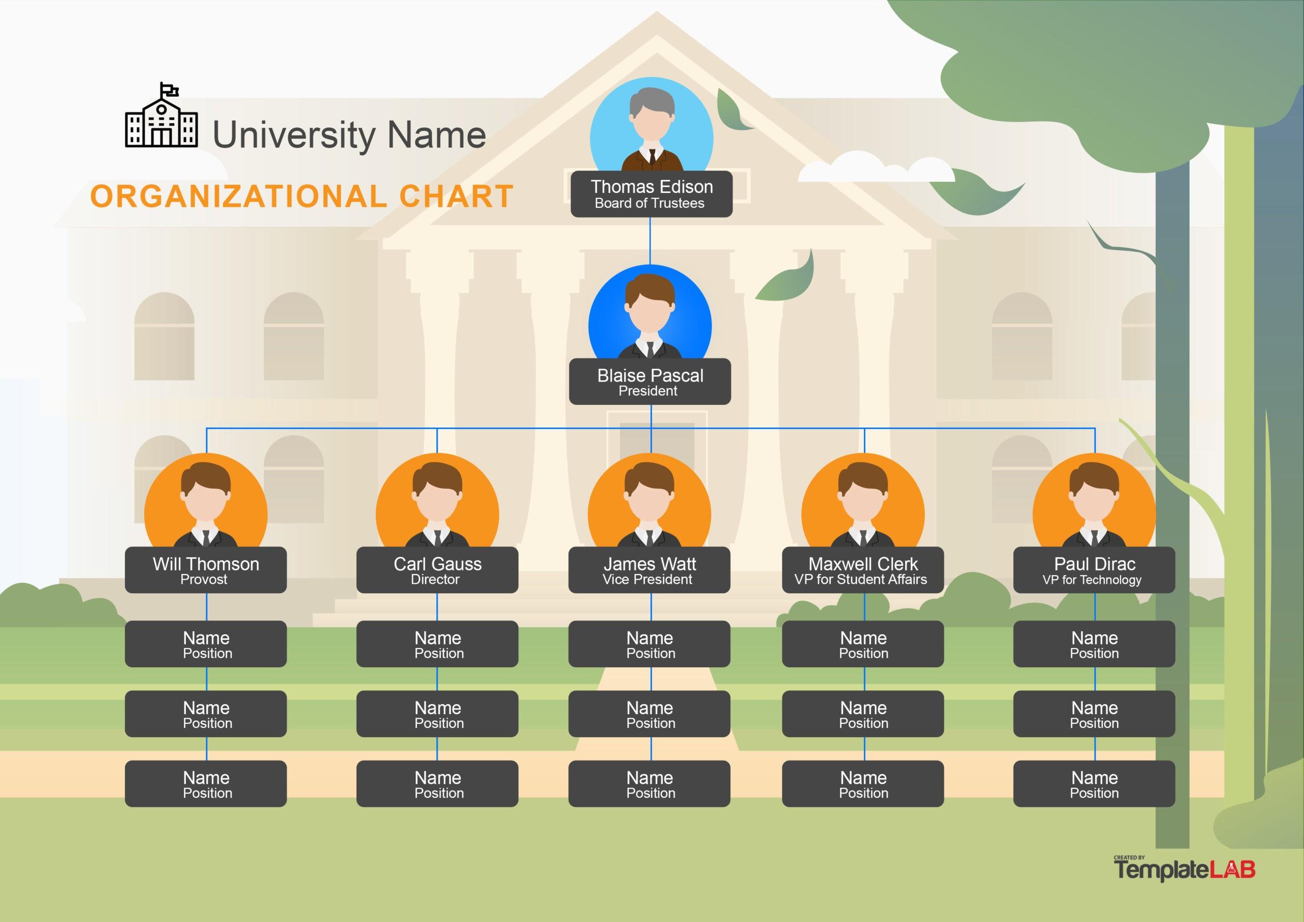 Free University Organizational chart