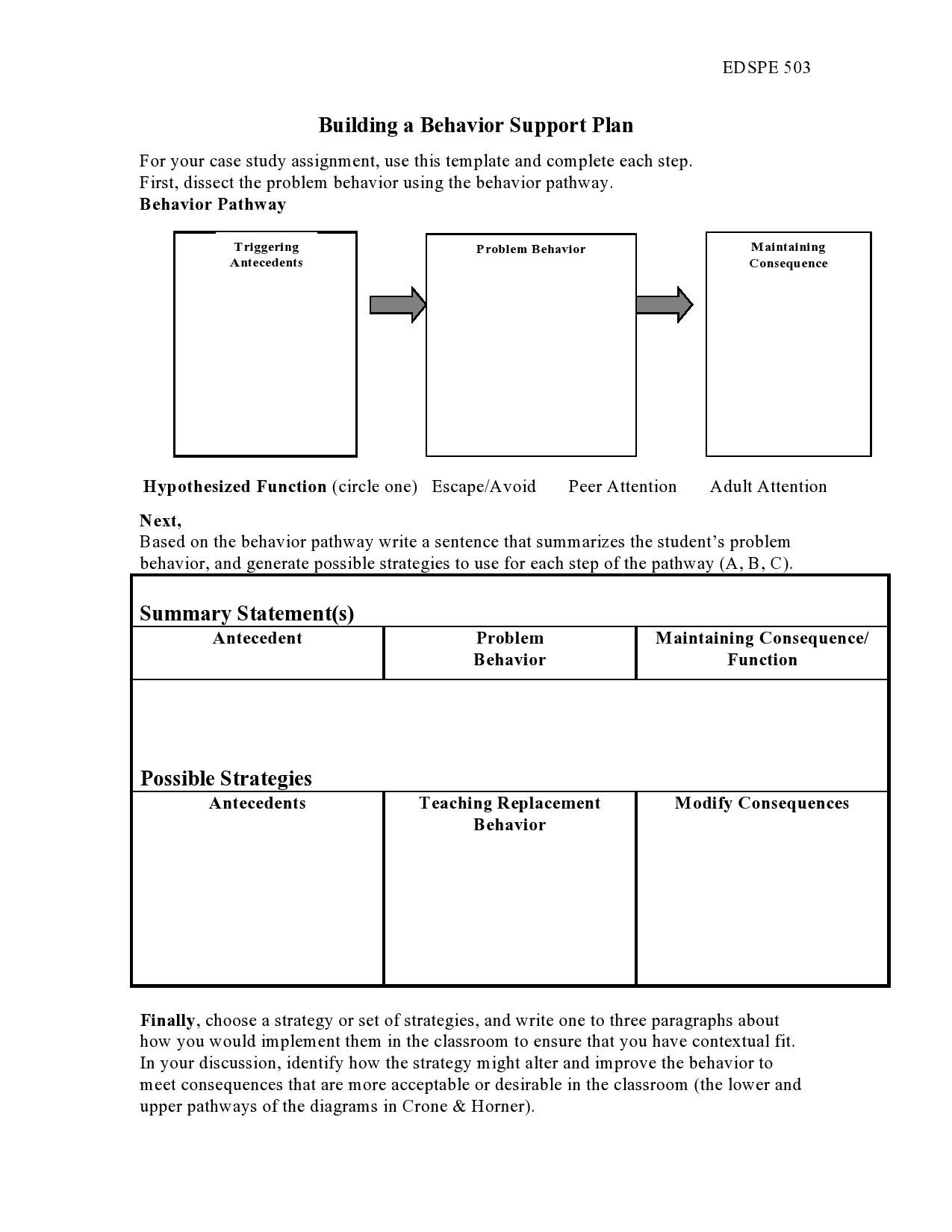 Free behavior plan template 06