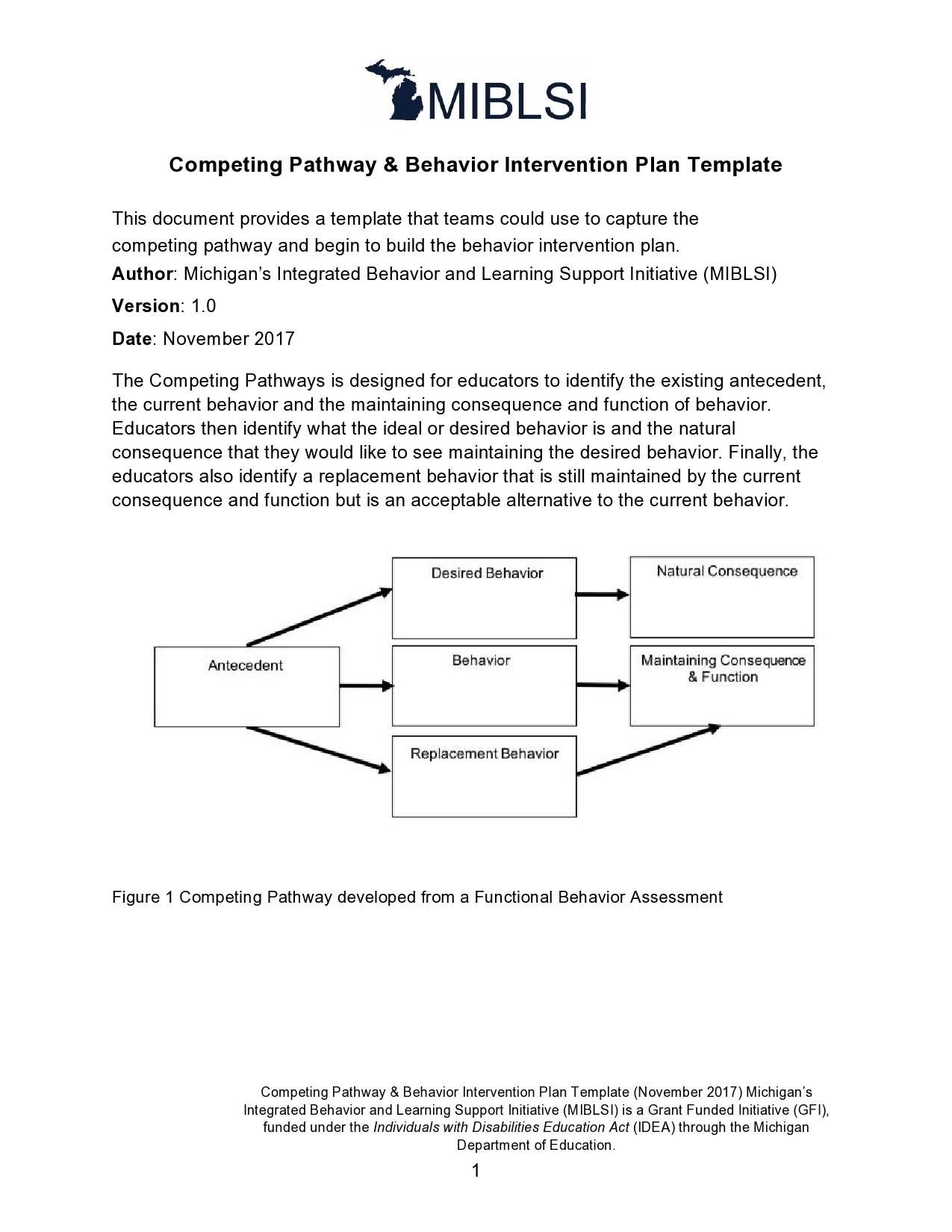 Free behavior plan template 18