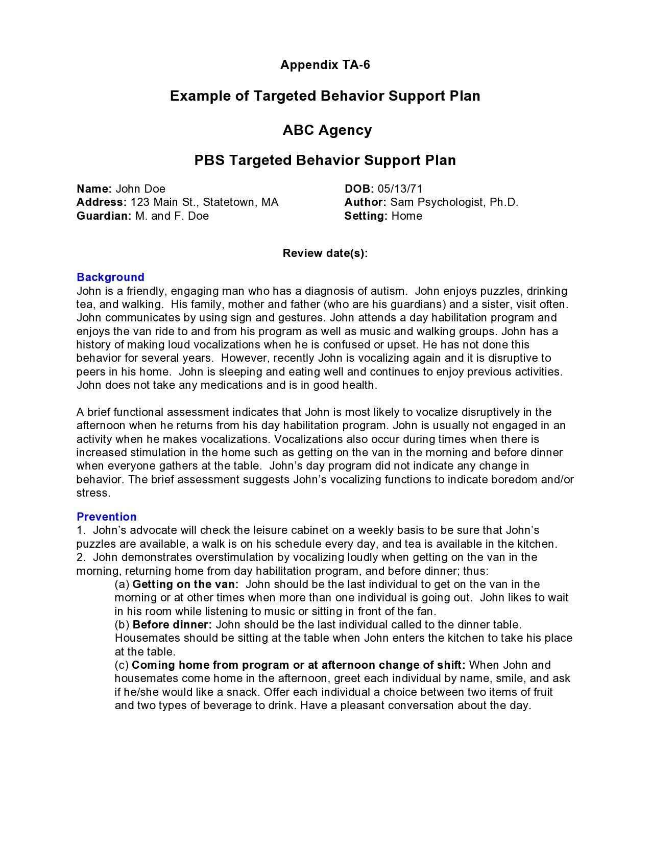 Free behavior plan template 22