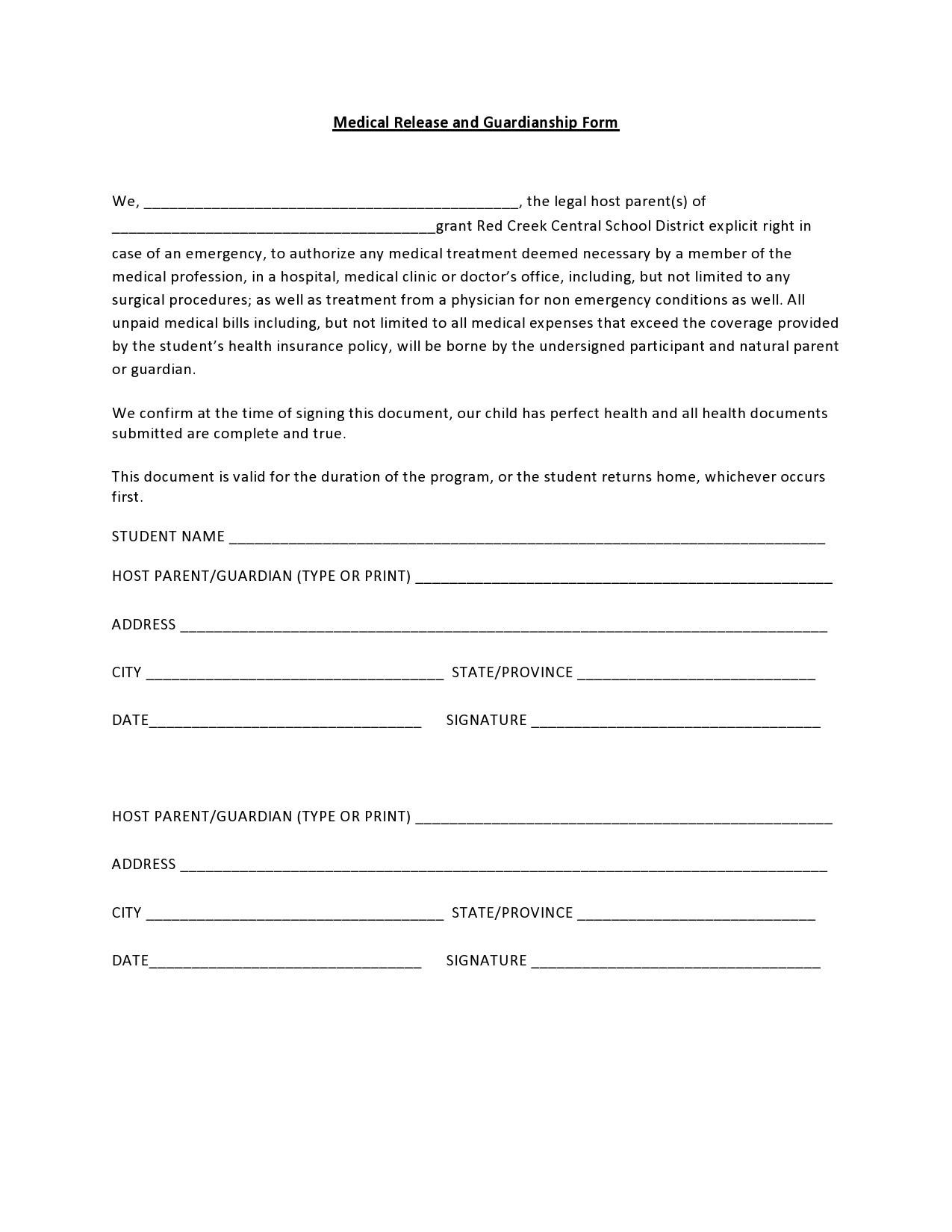 Free guardianship form 49