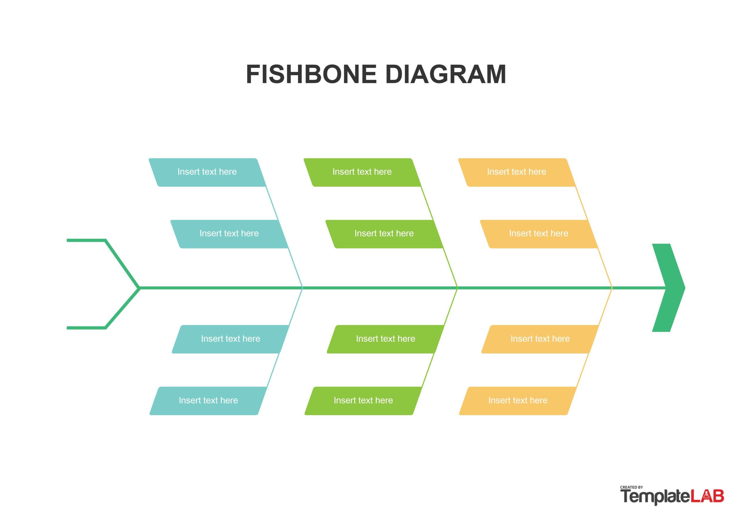 Free Fishbone Diagram Template 06 - TemplateLab.com